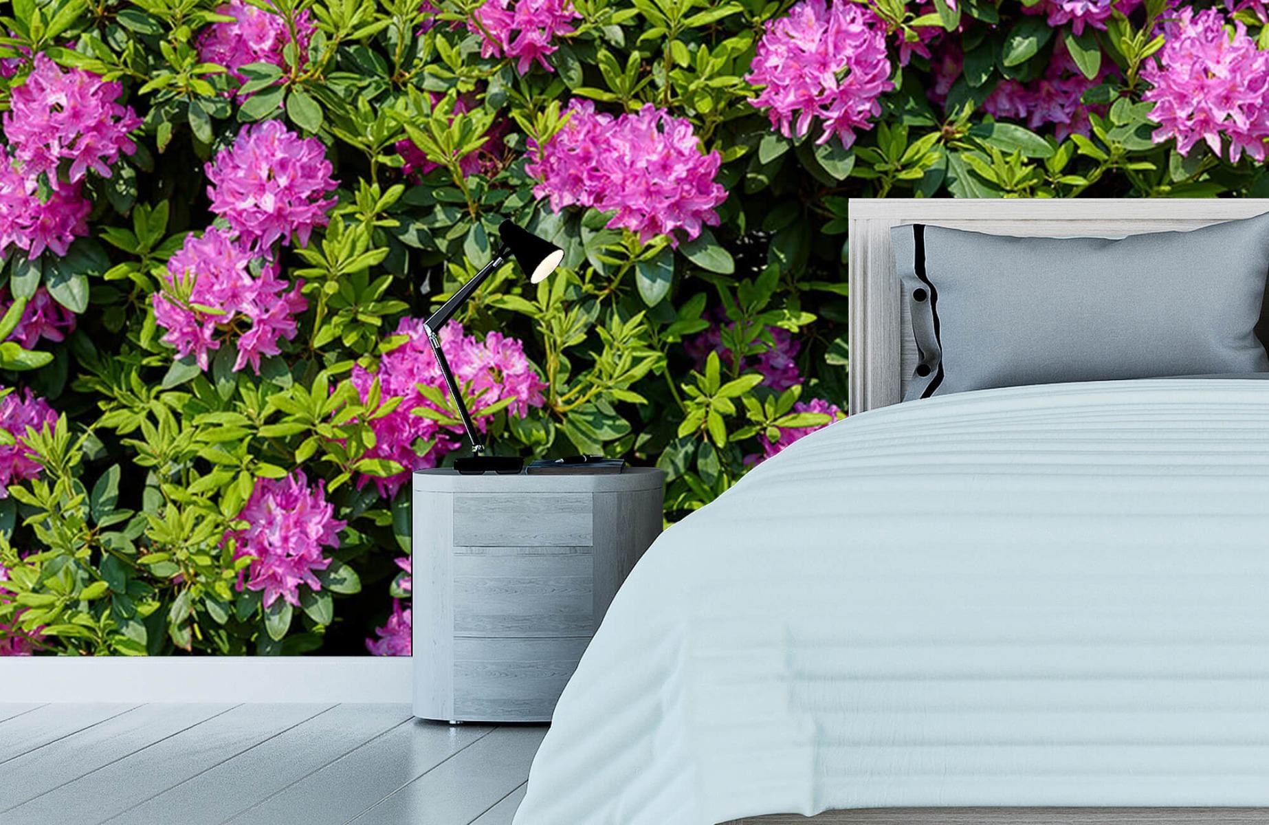 Bloemenvelden - Grote muur van rododendrons - Wallexclusive - Woonkamer 13