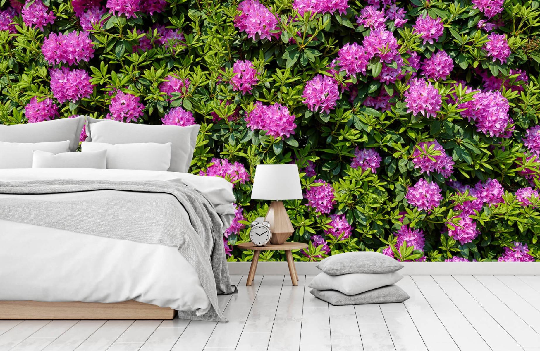 Bloemenvelden - Grote muur van rododendrons - Wallexclusive - Woonkamer 15
