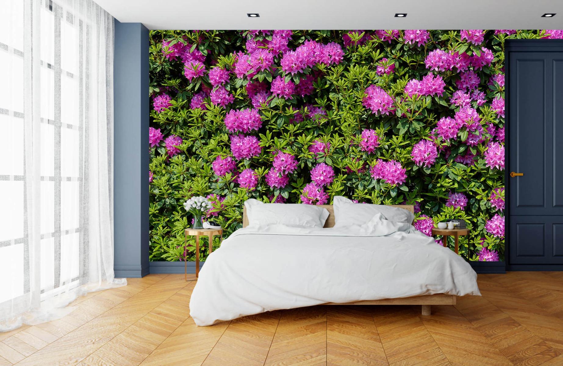 Bloemenvelden - Grote muur van rododendrons - Wallexclusive - Woonkamer 16