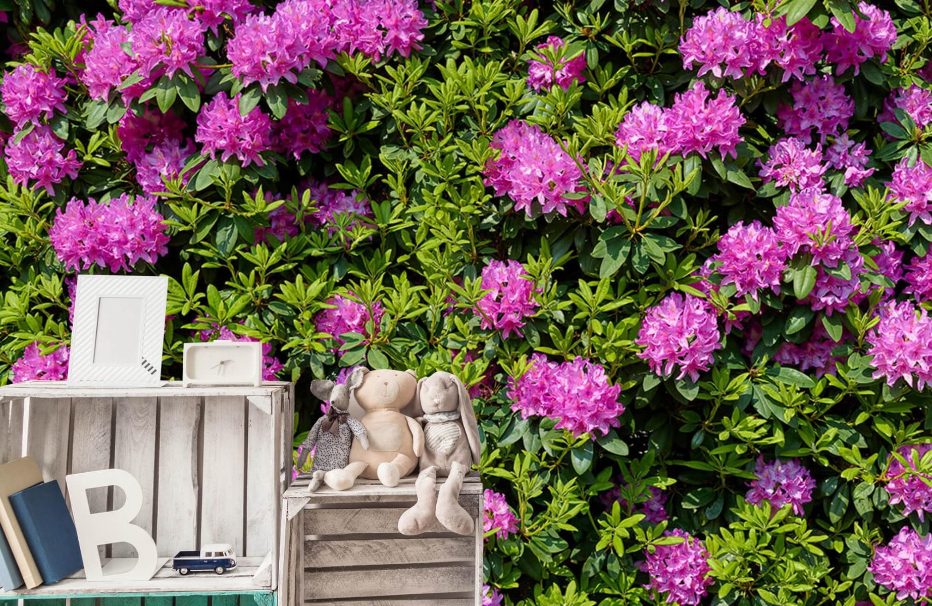 Bloemenvelden - Grote muur van rododendrons - Wallexclusive - Woonkamer 19