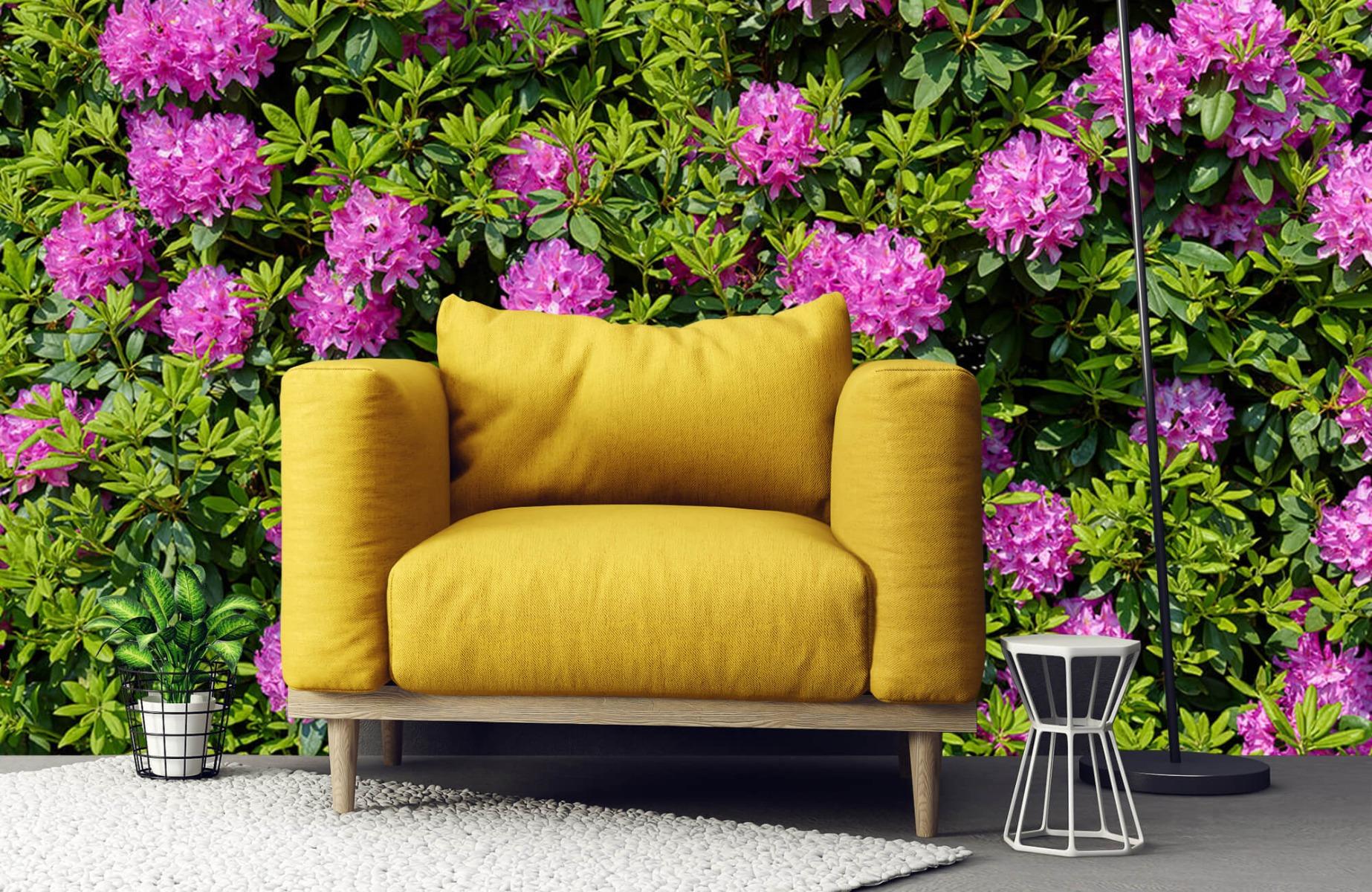 Bloemenvelden - Grote muur van rododendrons - Wallexclusive - Woonkamer 21