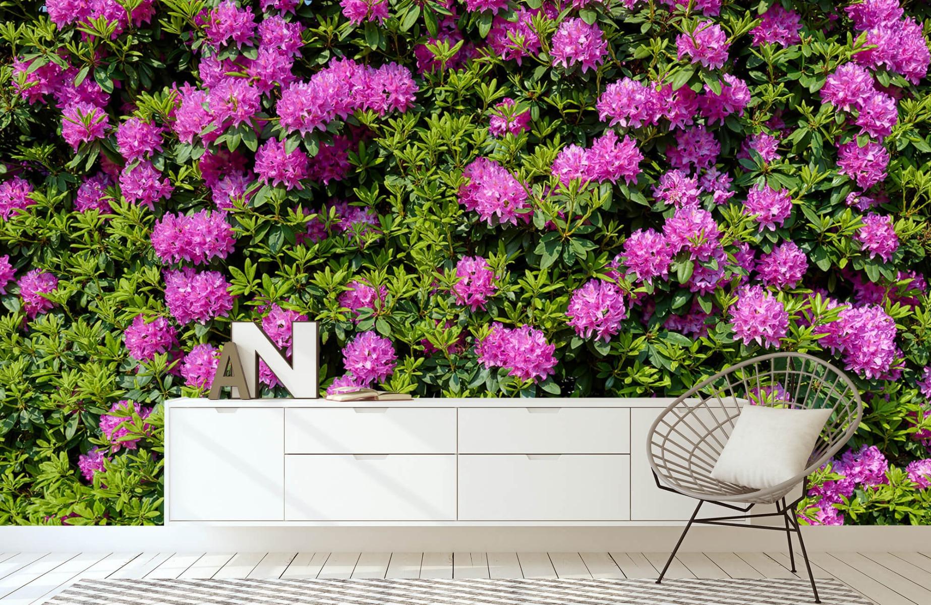 Bloemenvelden - Grote muur van rododendrons - Wallexclusive - Woonkamer 23
