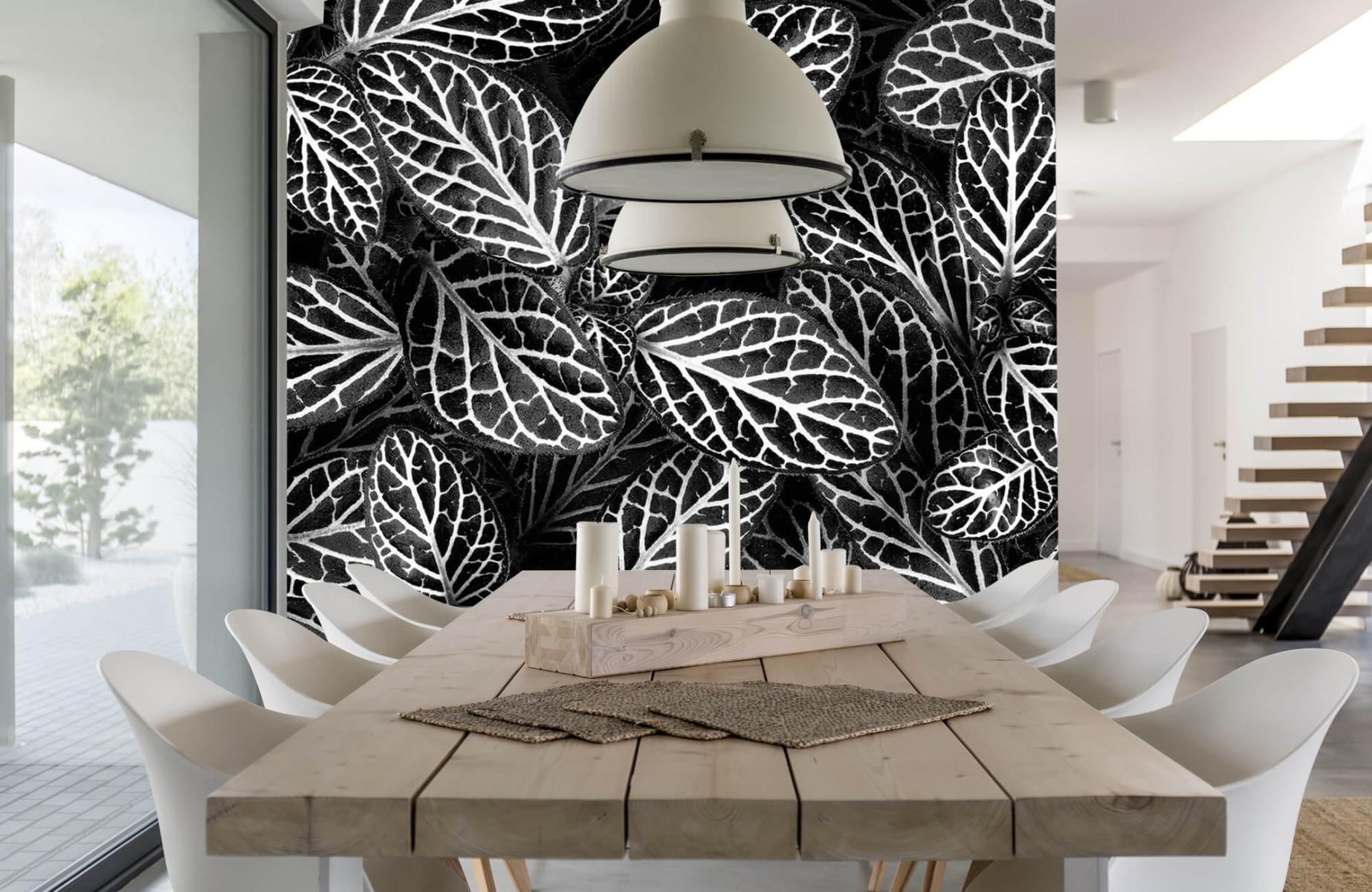 Zwart Wit behang - Fittonia - Wallexclusive - Vergaderruimte 16