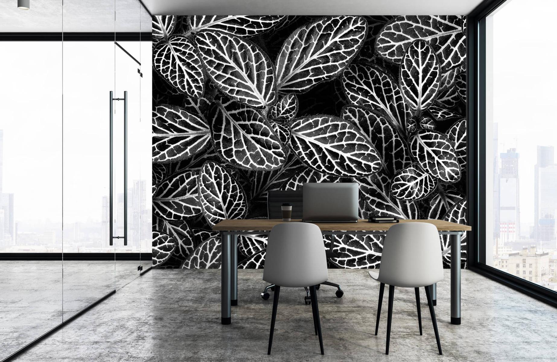 Zwart Wit behang - Fittonia - Wallexclusive - Vergaderruimte 15