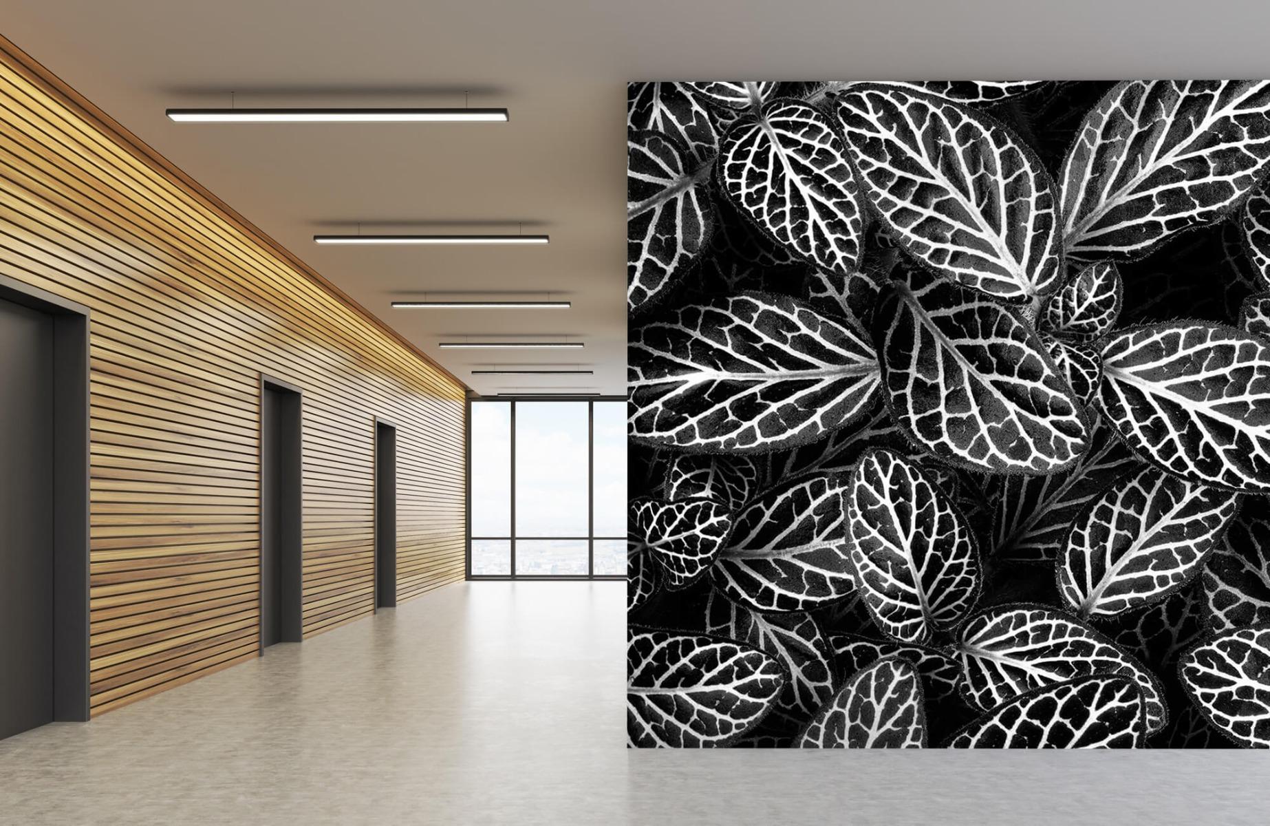 Zwart Wit behang - Fittonia - Wallexclusive - Vergaderruimte 5
