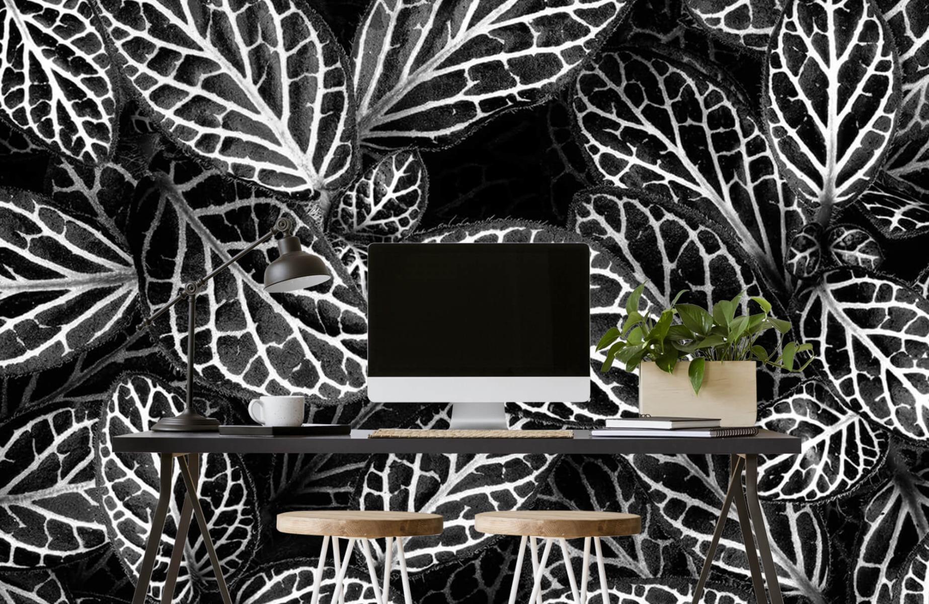 Zwart Wit behang - Fittonia - Wallexclusive - Vergaderruimte 6