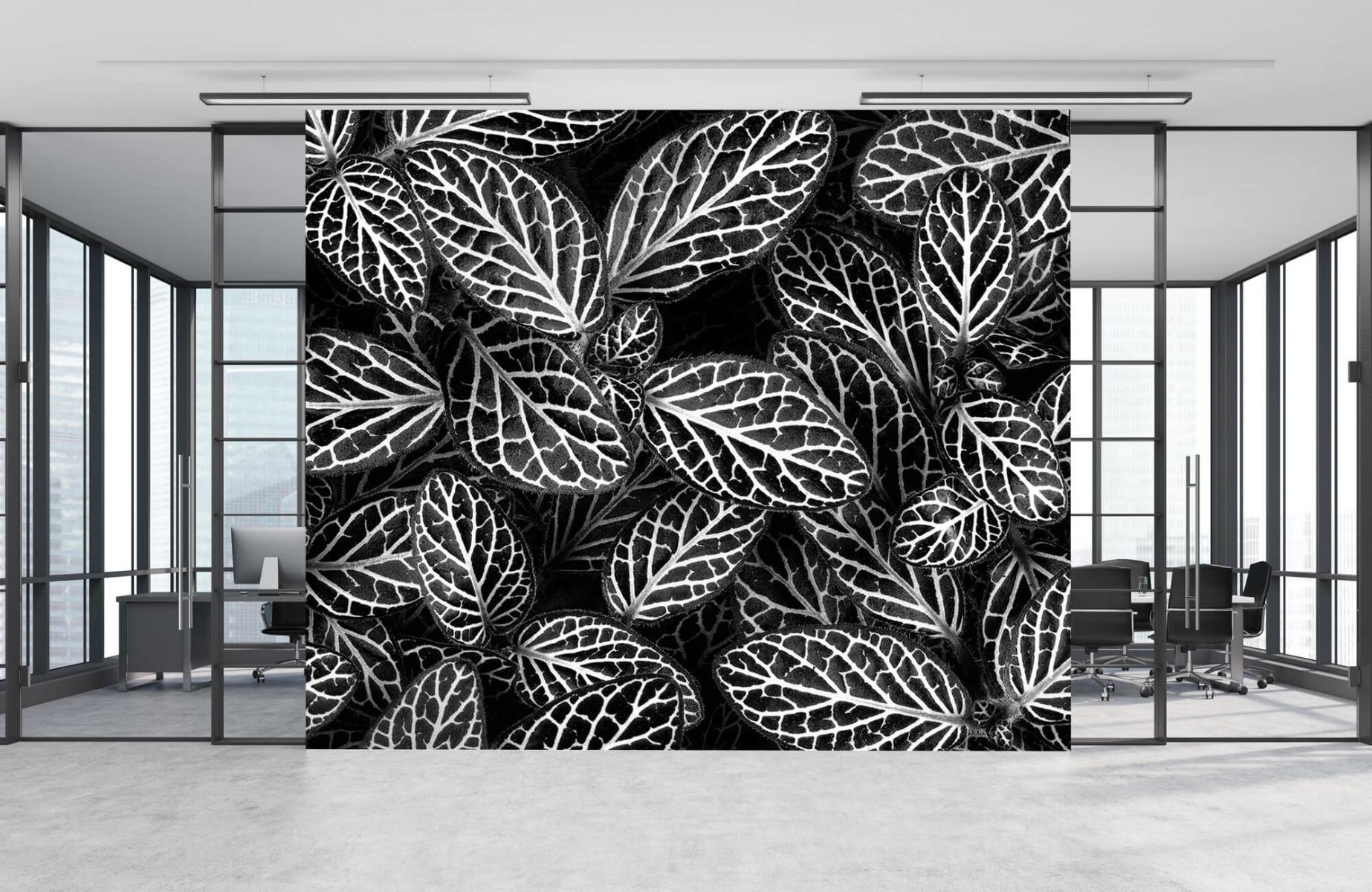Zwart Wit behang - Fittonia - Wallexclusive - Vergaderruimte 7