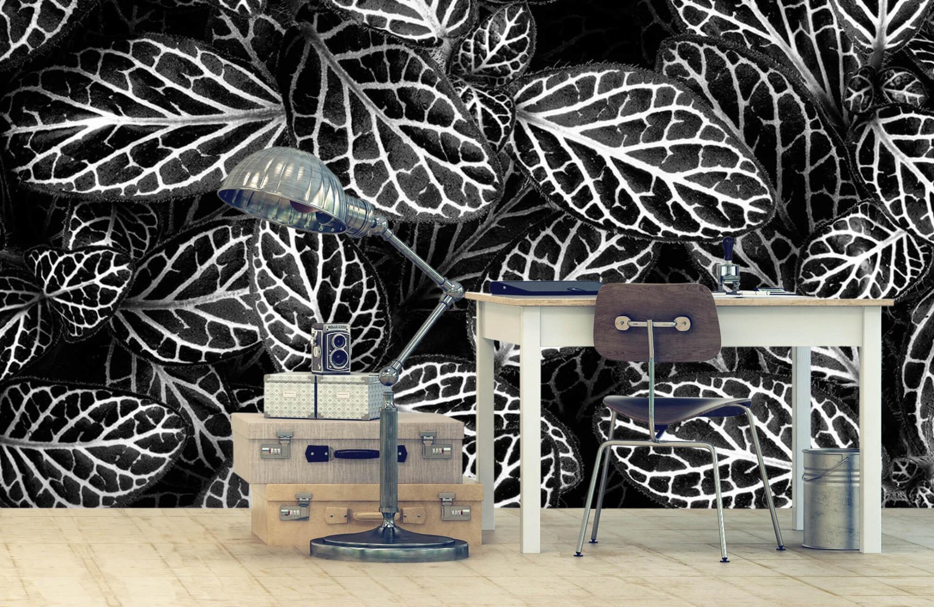 Zwart Wit behang - Fittonia - Wallexclusive - Vergaderruimte 8