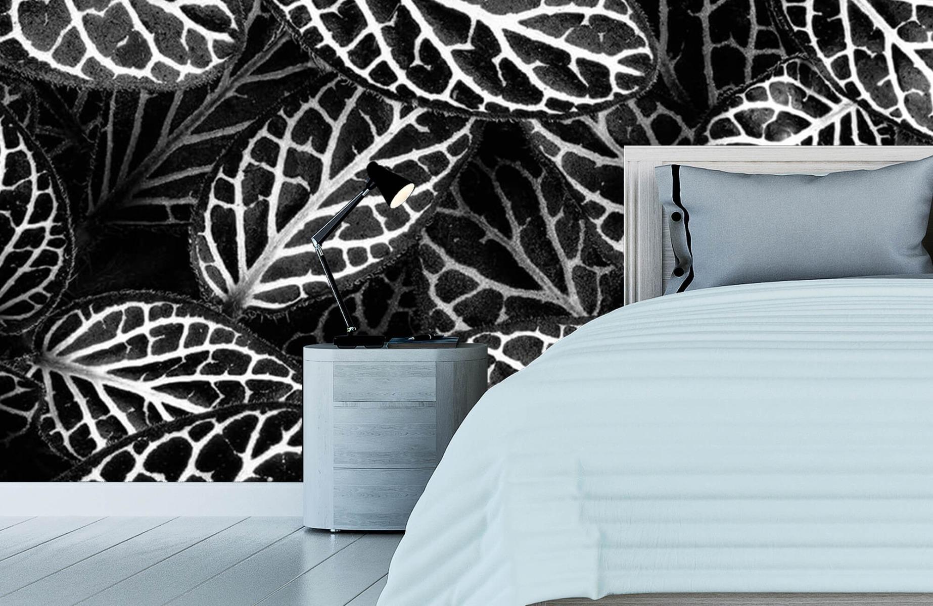 Zwart Wit behang - Fittonia - Wallexclusive - Vergaderruimte 11