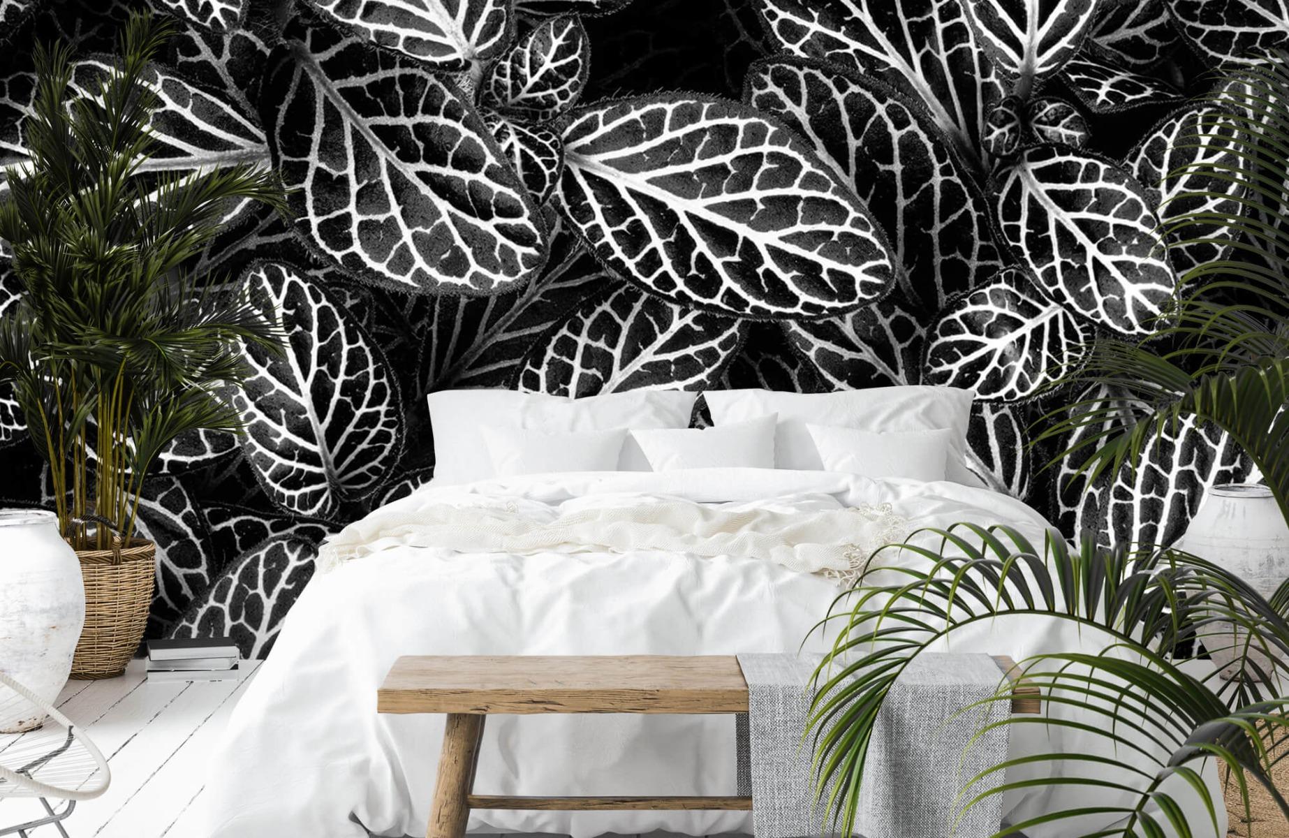 Zwart Wit behang - Fittonia - Wallexclusive - Vergaderruimte 12