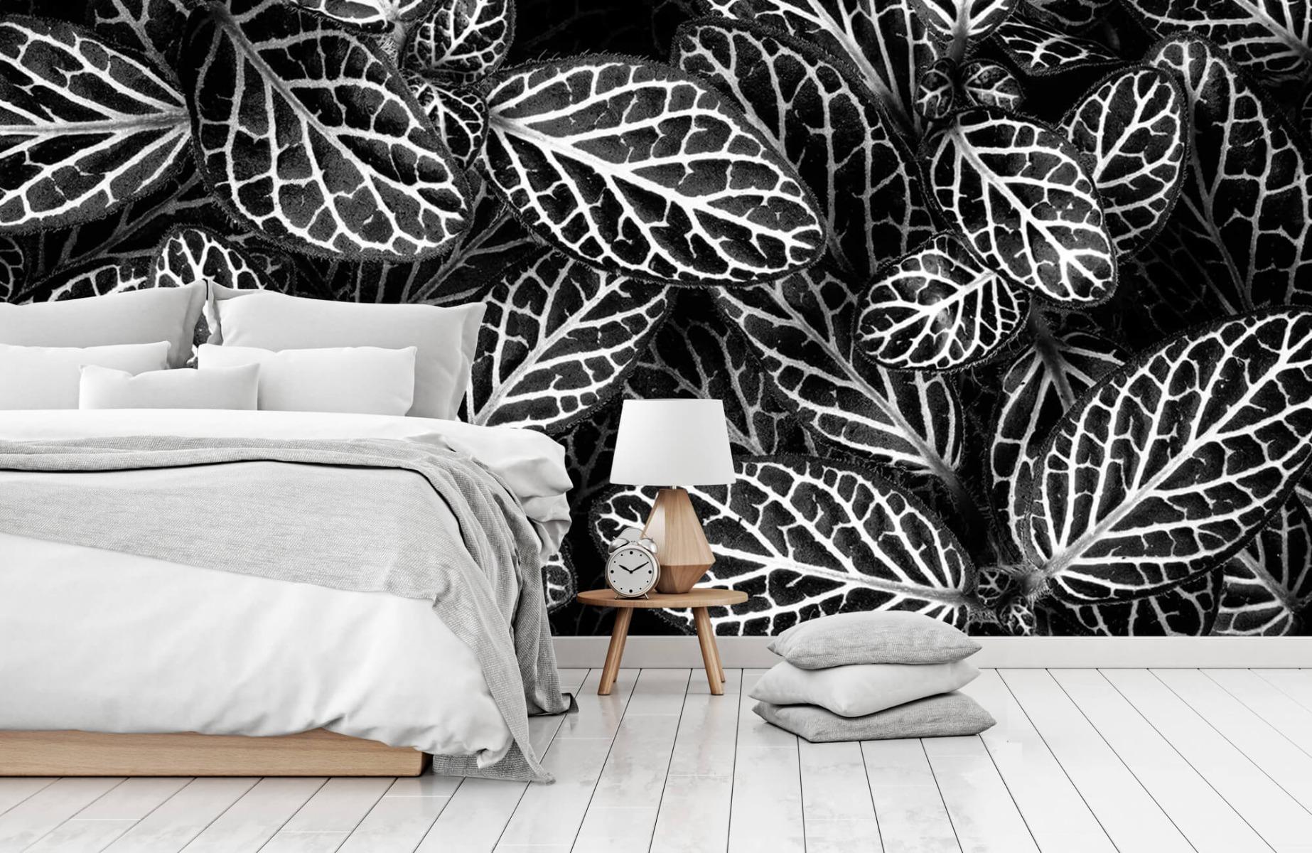 Zwart Wit behang - Fittonia - Wallexclusive - Vergaderruimte 13