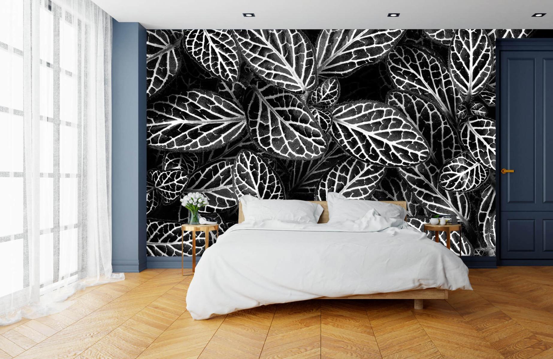 Zwart Wit behang - Fittonia - Wallexclusive - Vergaderruimte 14