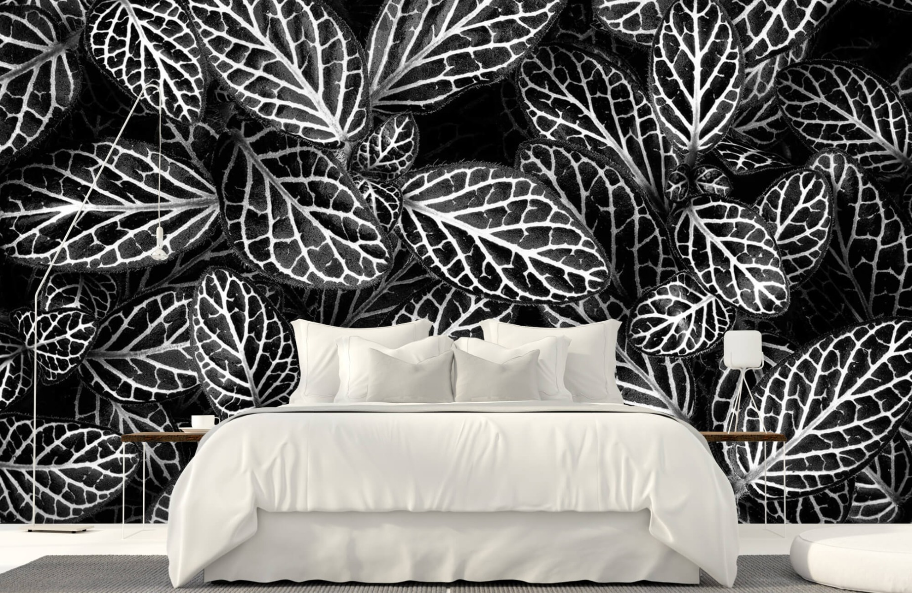 Zwart Wit behang - Fittonia - Wallexclusive - Vergaderruimte 17