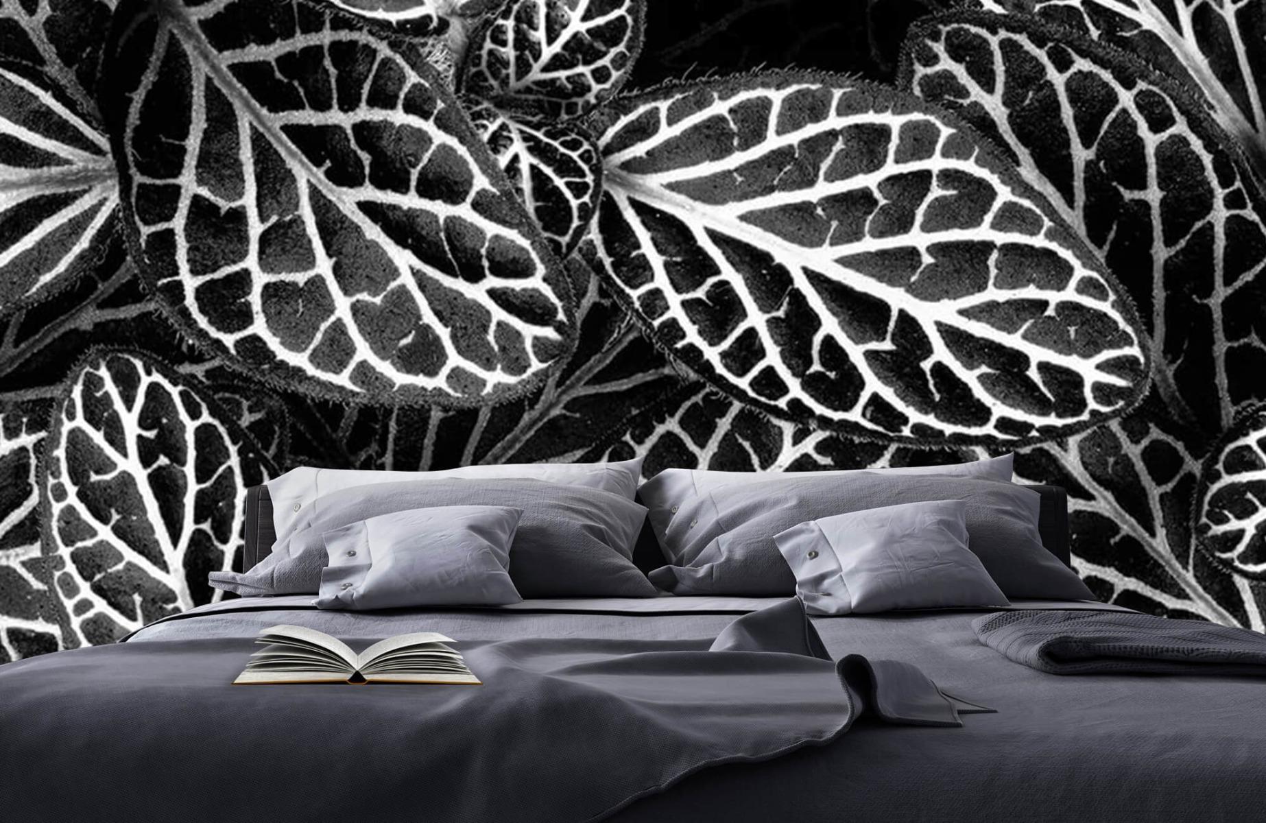 Zwart Wit behang - Fittonia - Wallexclusive - Vergaderruimte 4