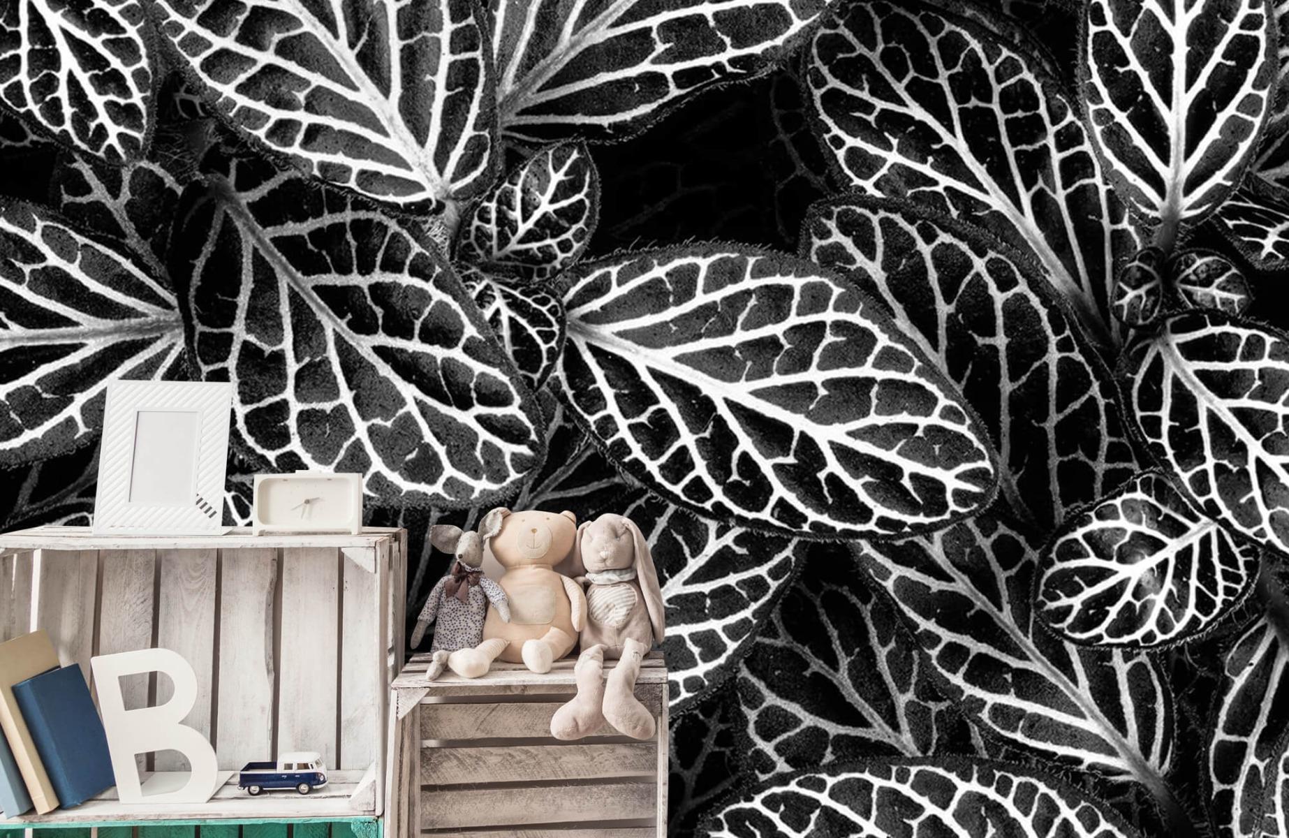 Zwart Wit behang - Fittonia - Wallexclusive - Vergaderruimte 19