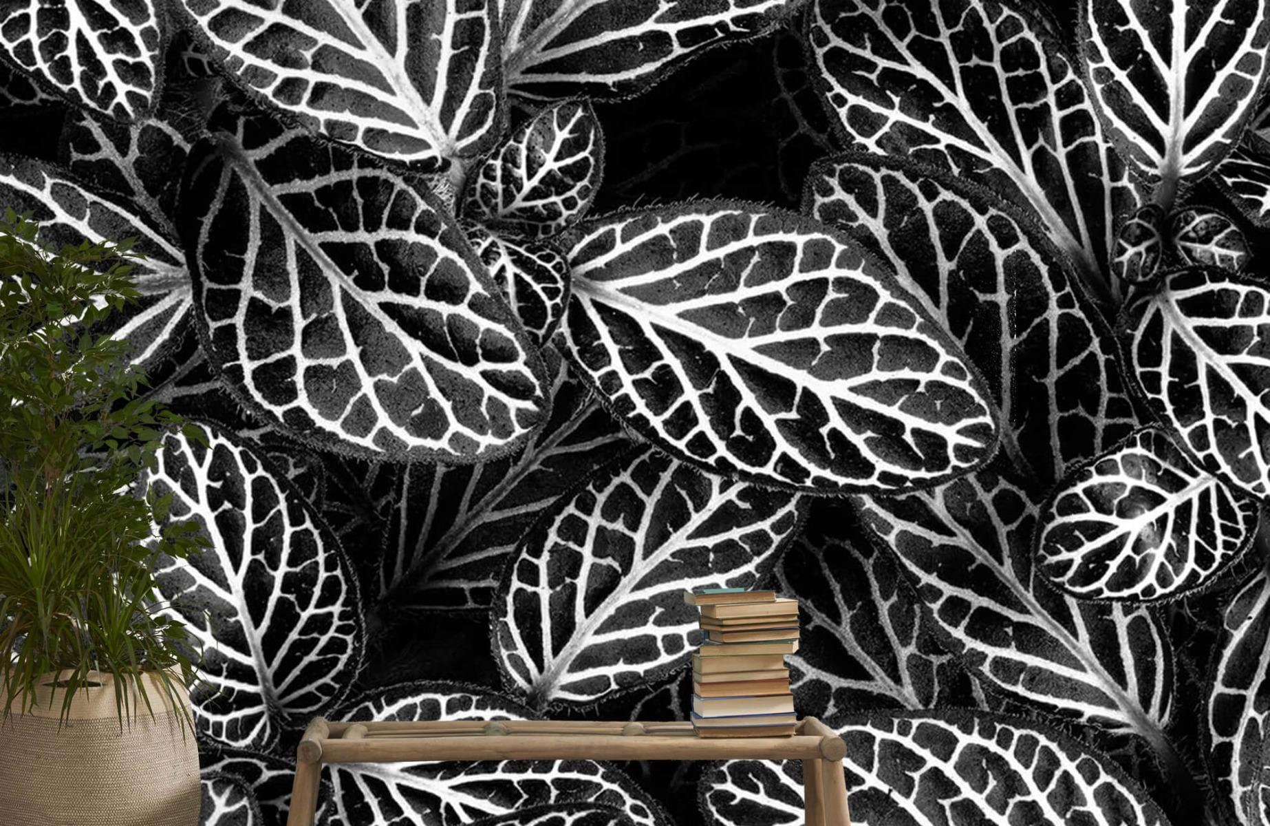 Zwart Wit behang - Fittonia - Wallexclusive - Vergaderruimte 20