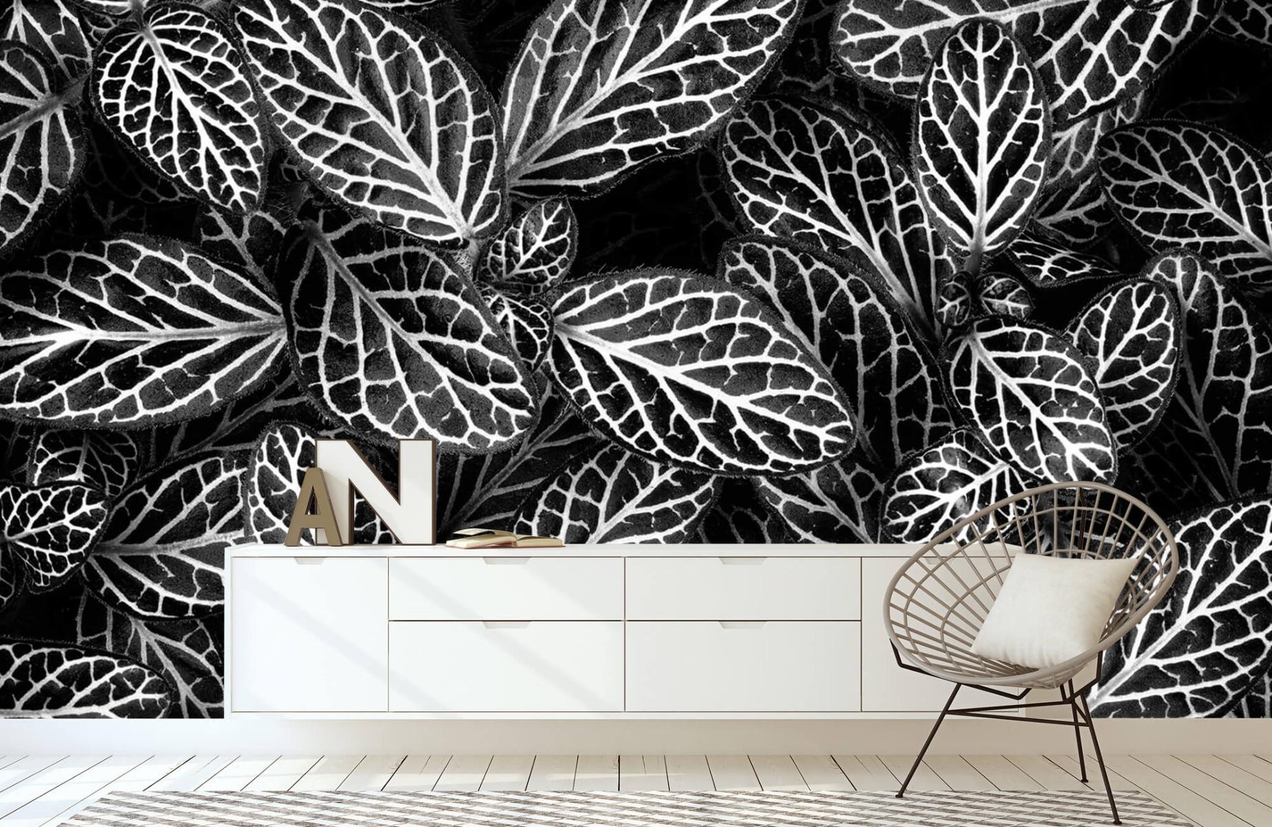 Zwart Wit behang - Fittonia - Wallexclusive - Vergaderruimte 23