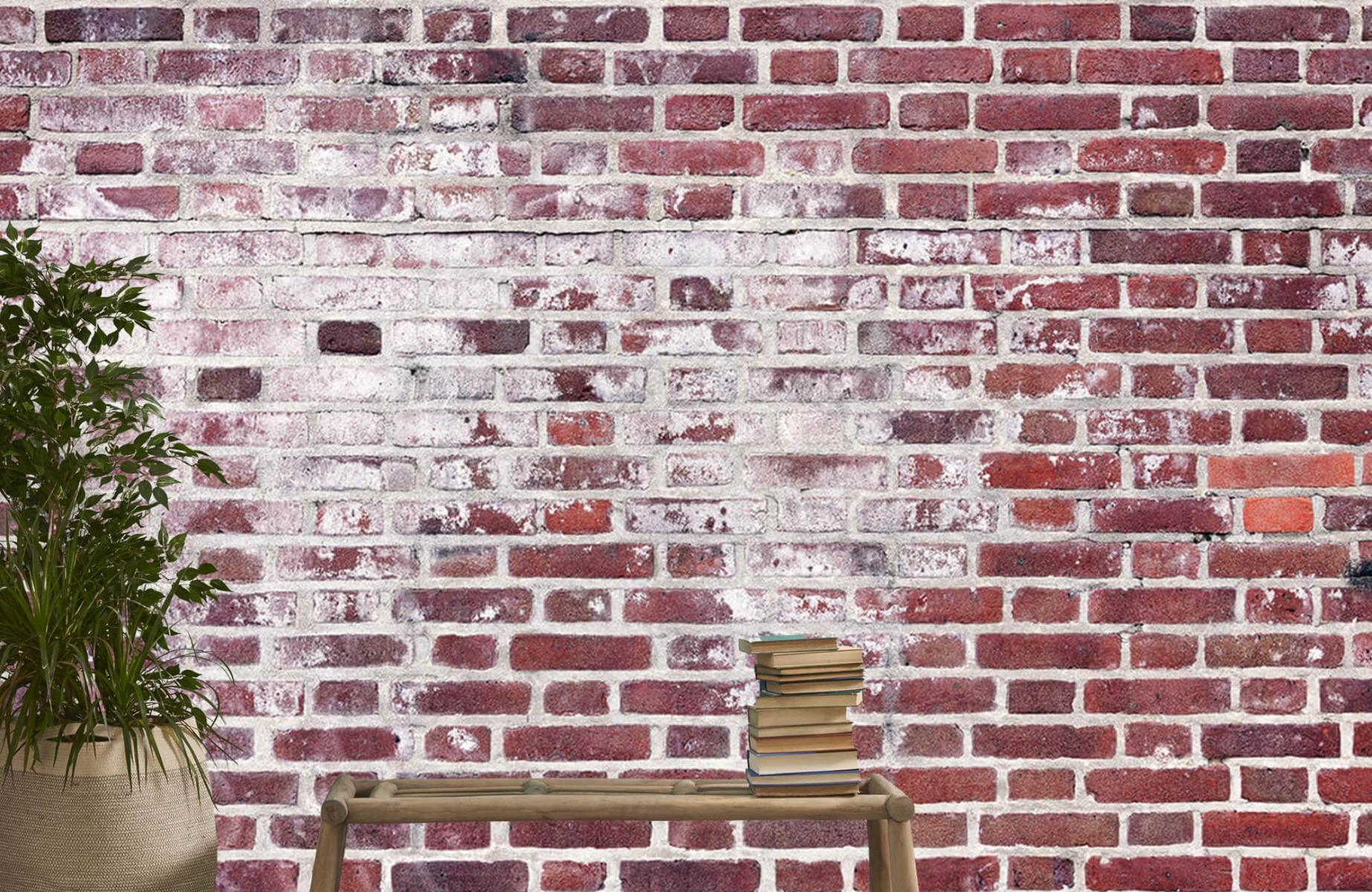 Steen behang - Bakstenen met cement - Wallexclusive - Woonkamer 20