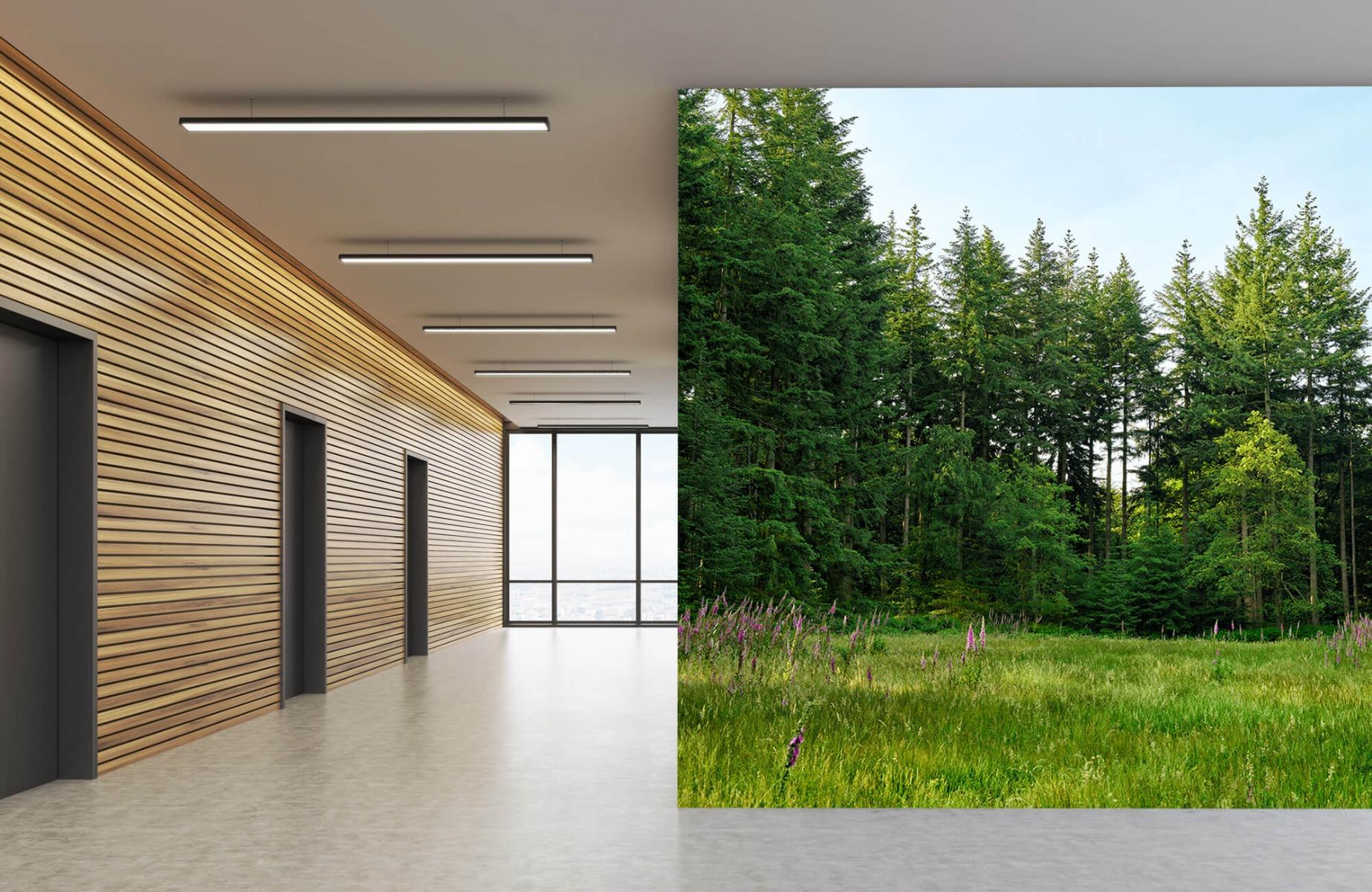 Bos behang - Open plek in het bos - Wallexclusive - Slaapkamer 8