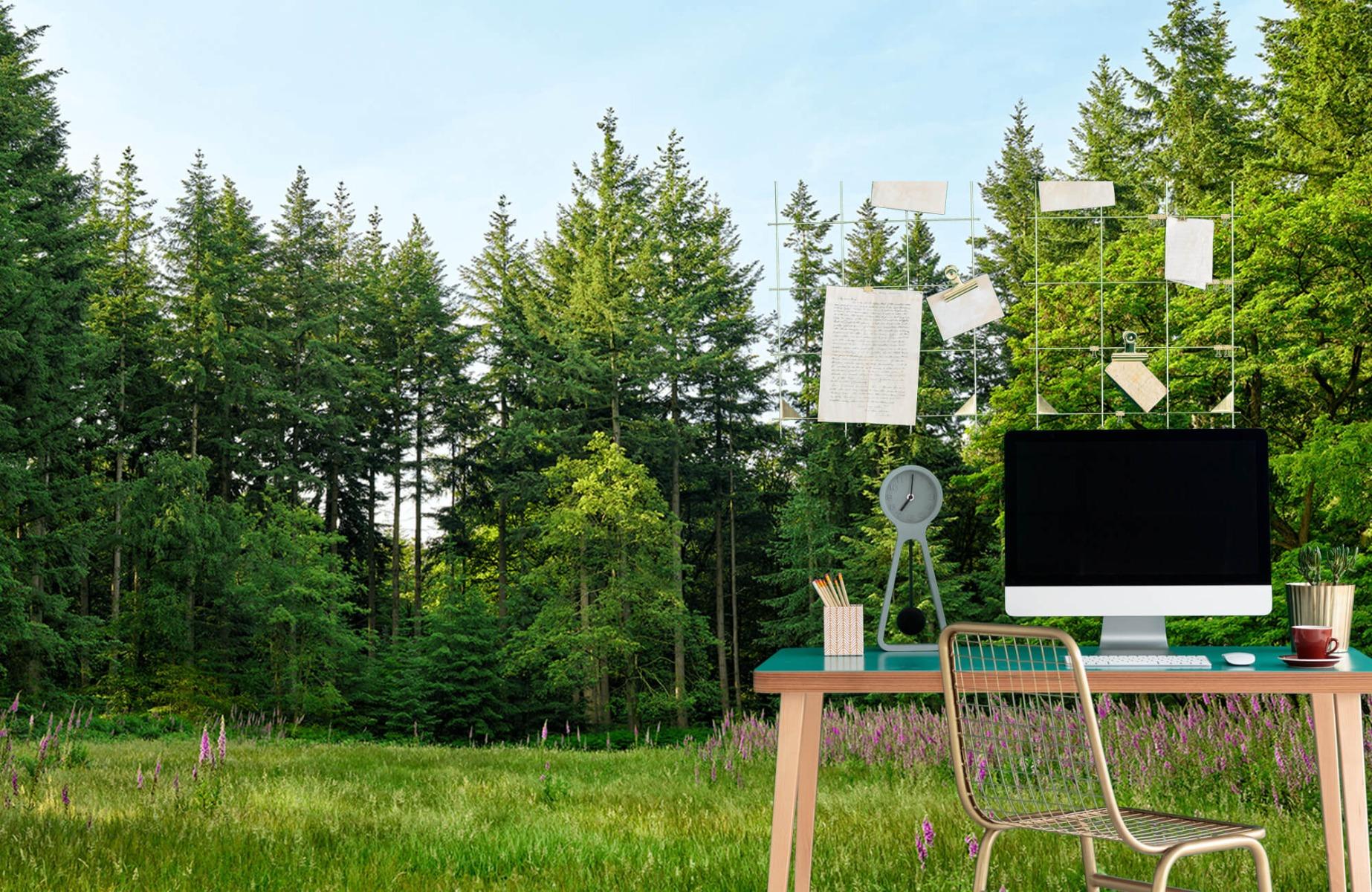 Bos behang - Open plek in het bos - Wallexclusive - Slaapkamer 10