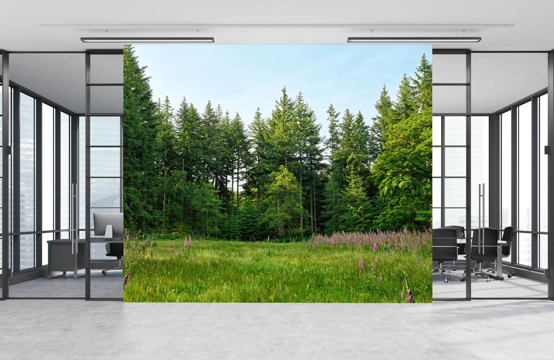 Bos behang - Open plek in het bos - Wallexclusive - Slaapkamer 11