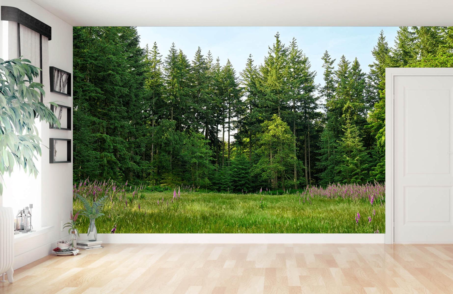 Bos behang - Open plek in het bos - Wallexclusive - Slaapkamer 13