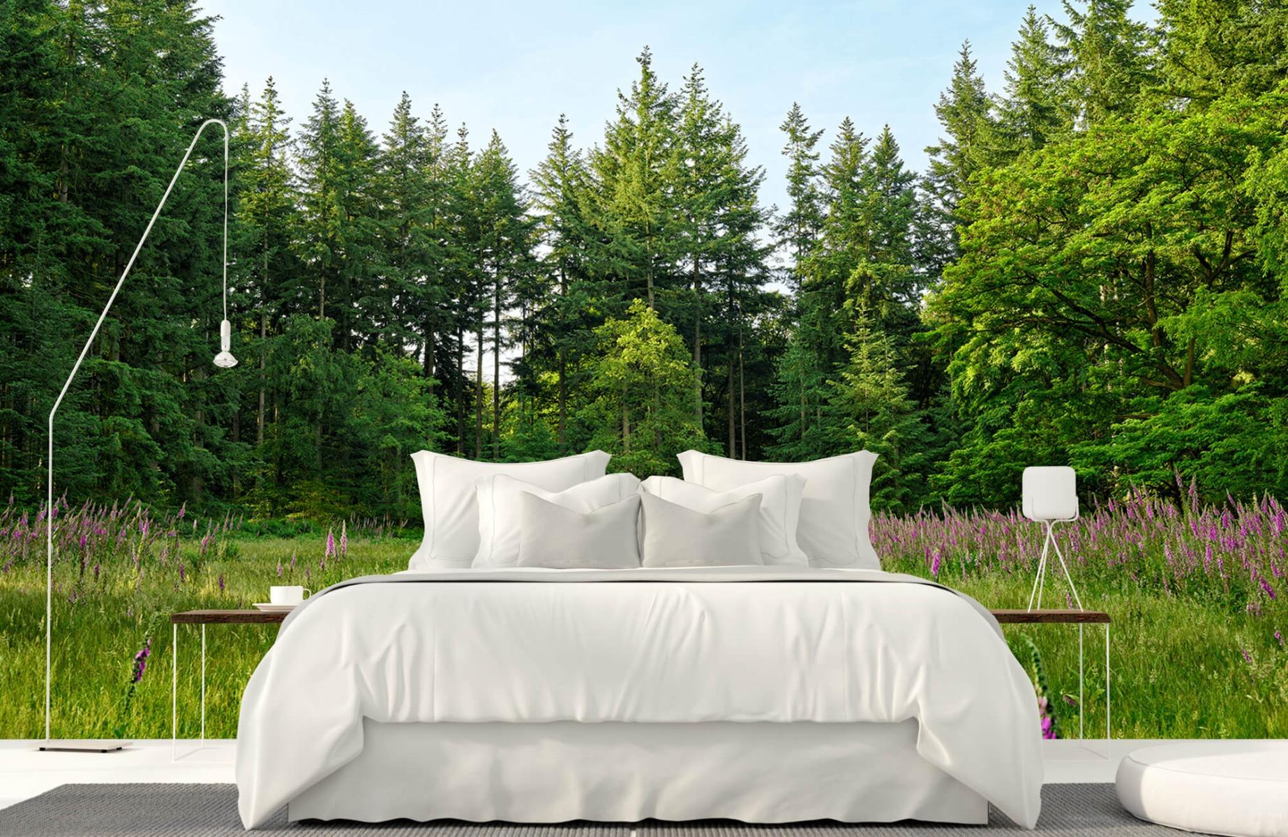 Bos behang - Open plek in het bos - Wallexclusive - Slaapkamer 17
