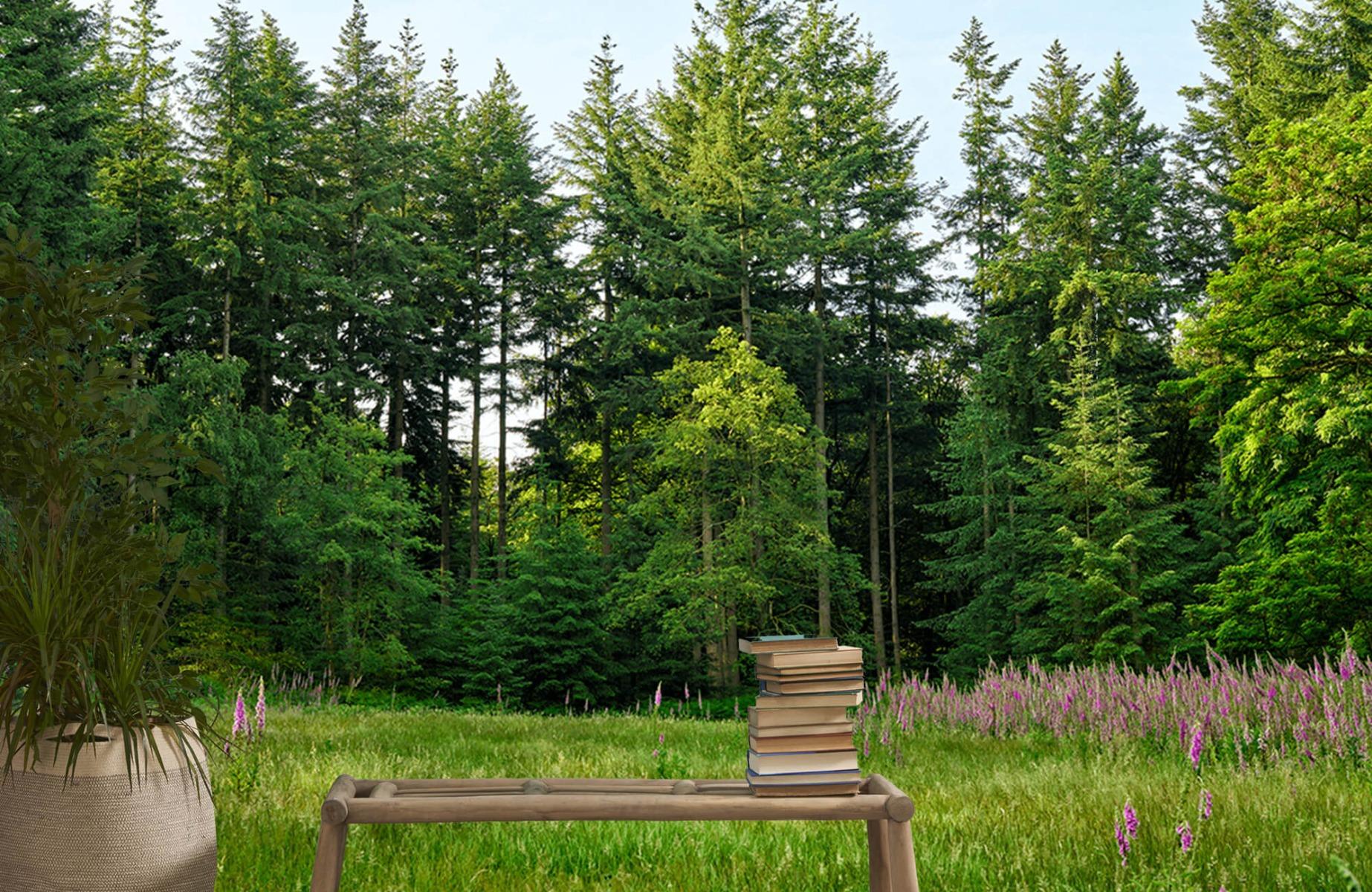 Bos behang - Open plek in het bos - Wallexclusive - Slaapkamer 20
