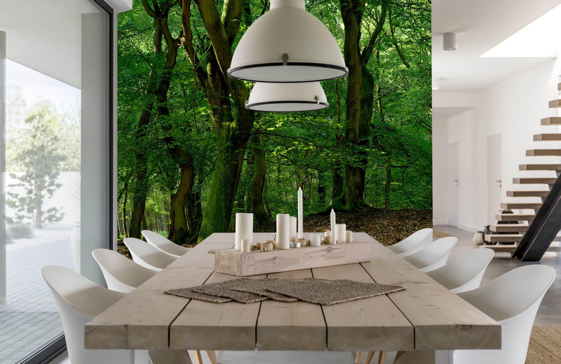 Bos behang - Bomen met groene bladeren - Wallexclusive - Slaapkamer 5