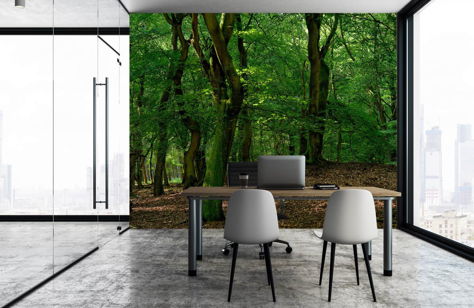 Bos behang - Bomen met groene bladeren - Wallexclusive - Slaapkamer 7