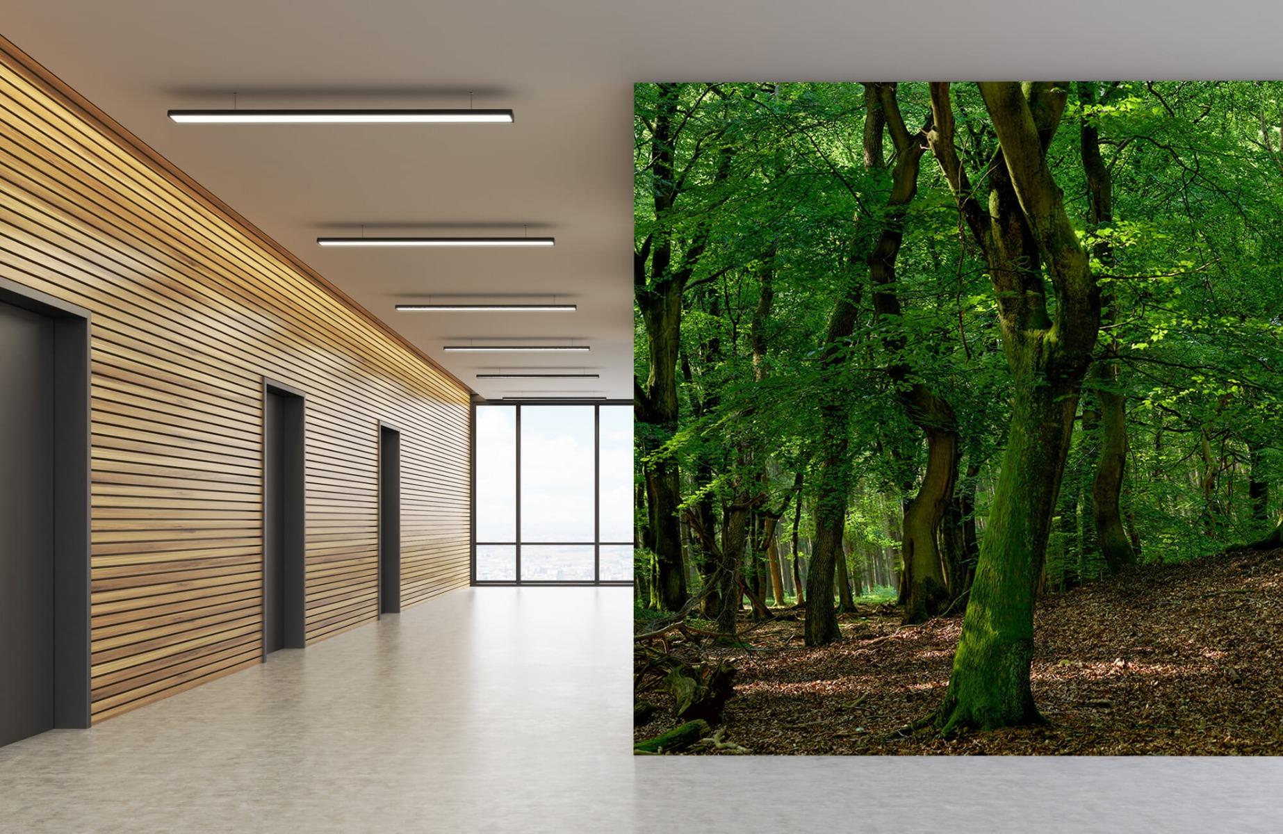 Bos behang - Bomen met groene bladeren - Wallexclusive - Slaapkamer 9