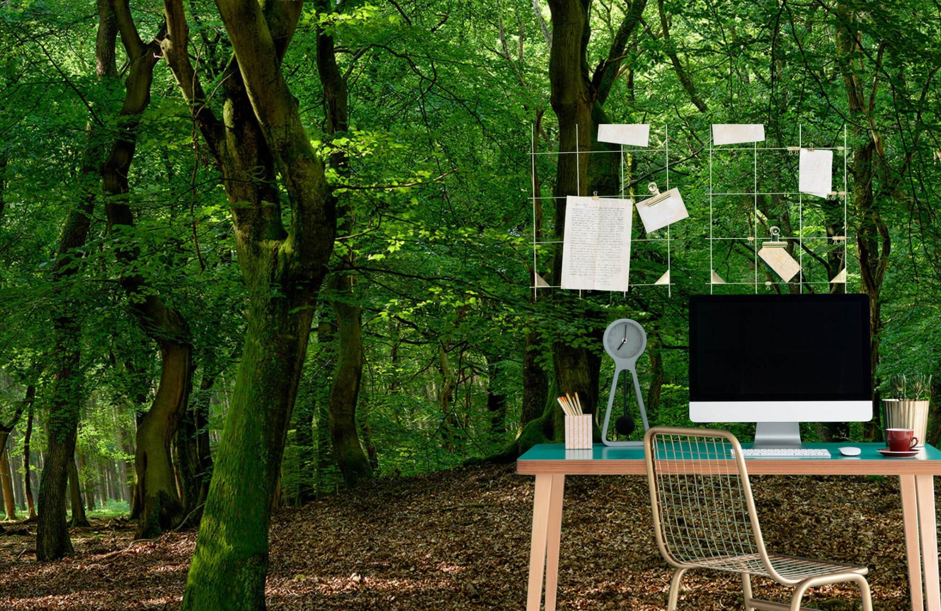 Bos behang - Bomen met groene bladeren - Wallexclusive - Slaapkamer 11