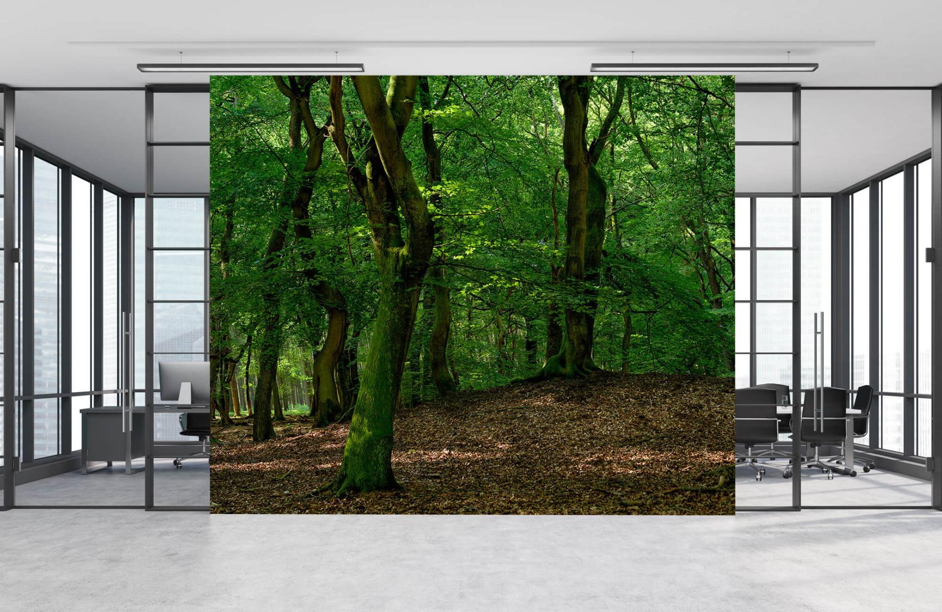 Bos behang - Bomen met groene bladeren - Wallexclusive - Slaapkamer 12