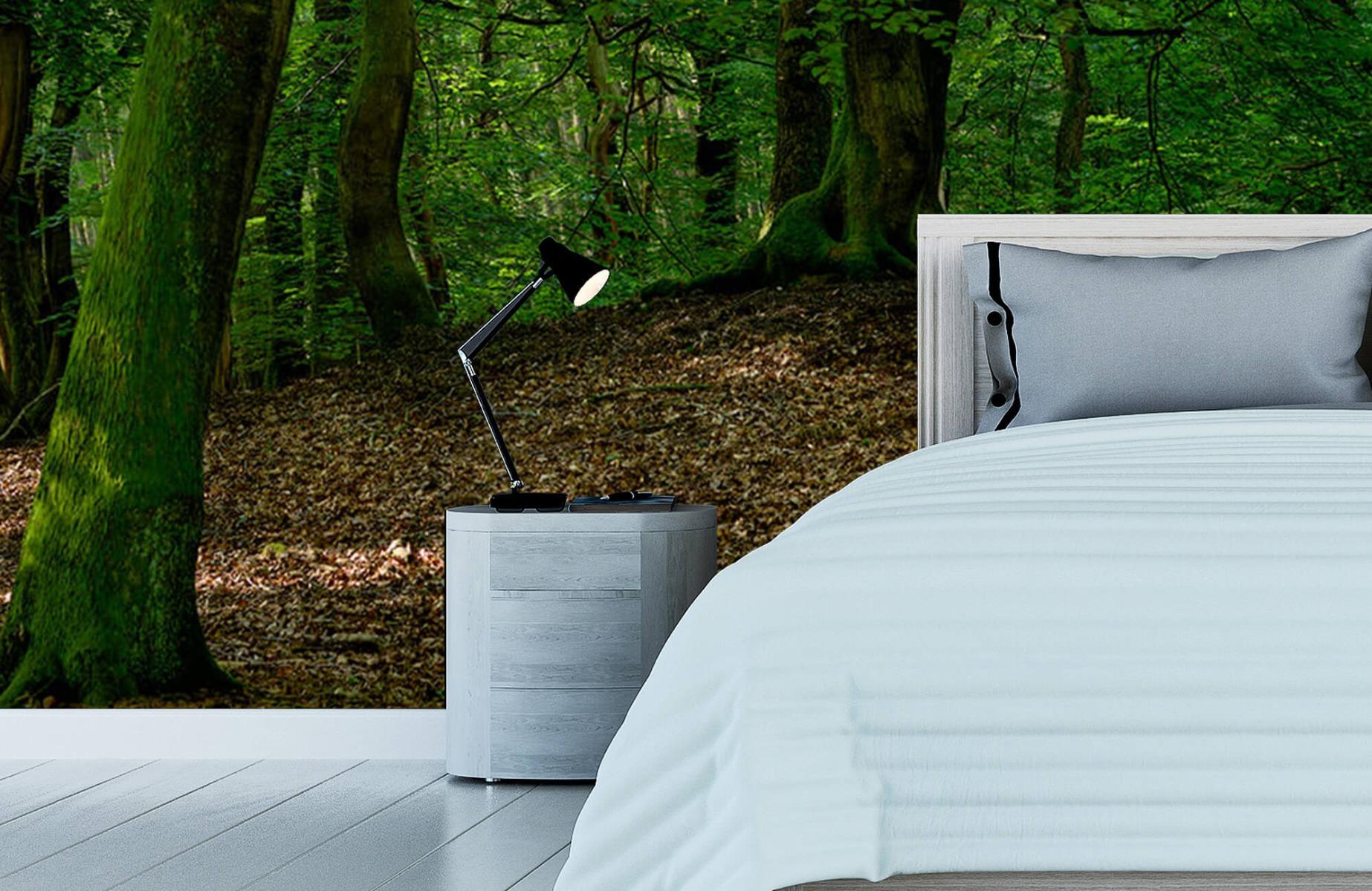 Bos behang - Bomen met groene bladeren - Wallexclusive - Slaapkamer 16