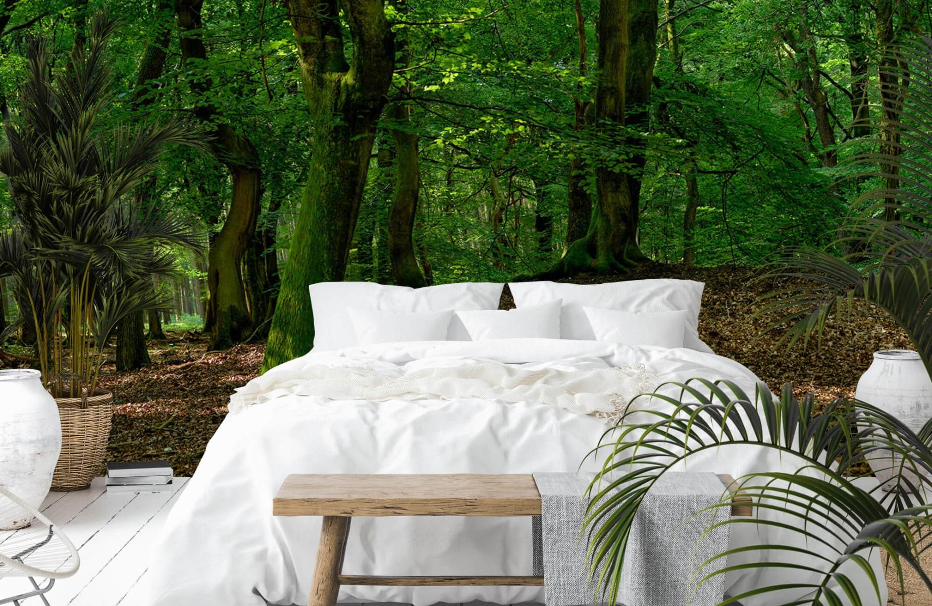 Bos behang - Bomen met groene bladeren - Wallexclusive - Slaapkamer 1