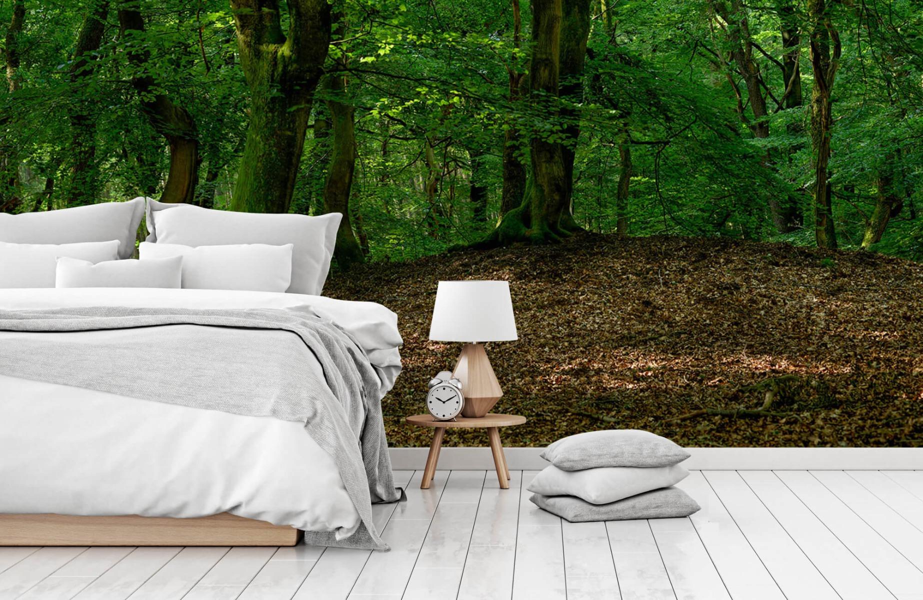 Bos behang - Bomen met groene bladeren - Wallexclusive - Slaapkamer 2