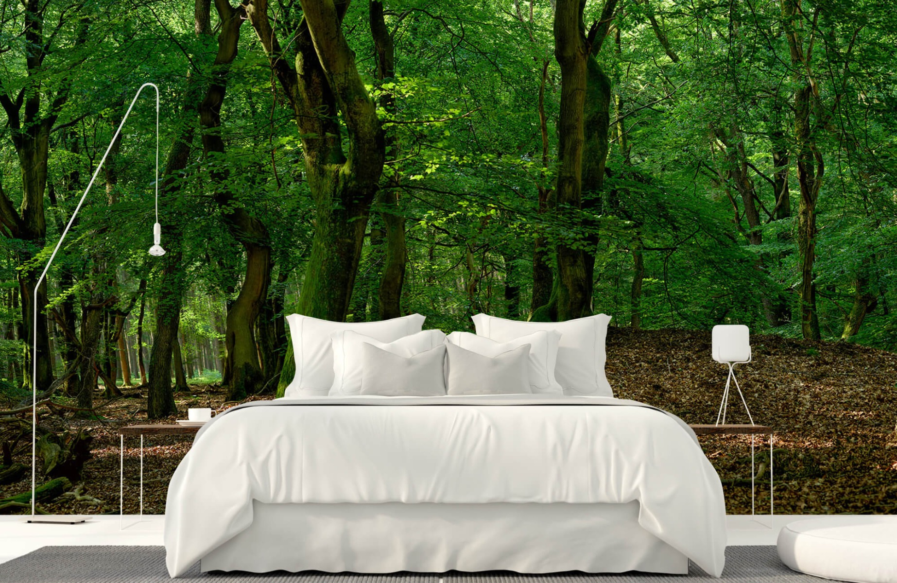 Bos behang - Bomen met groene bladeren - Wallexclusive - Slaapkamer 18
