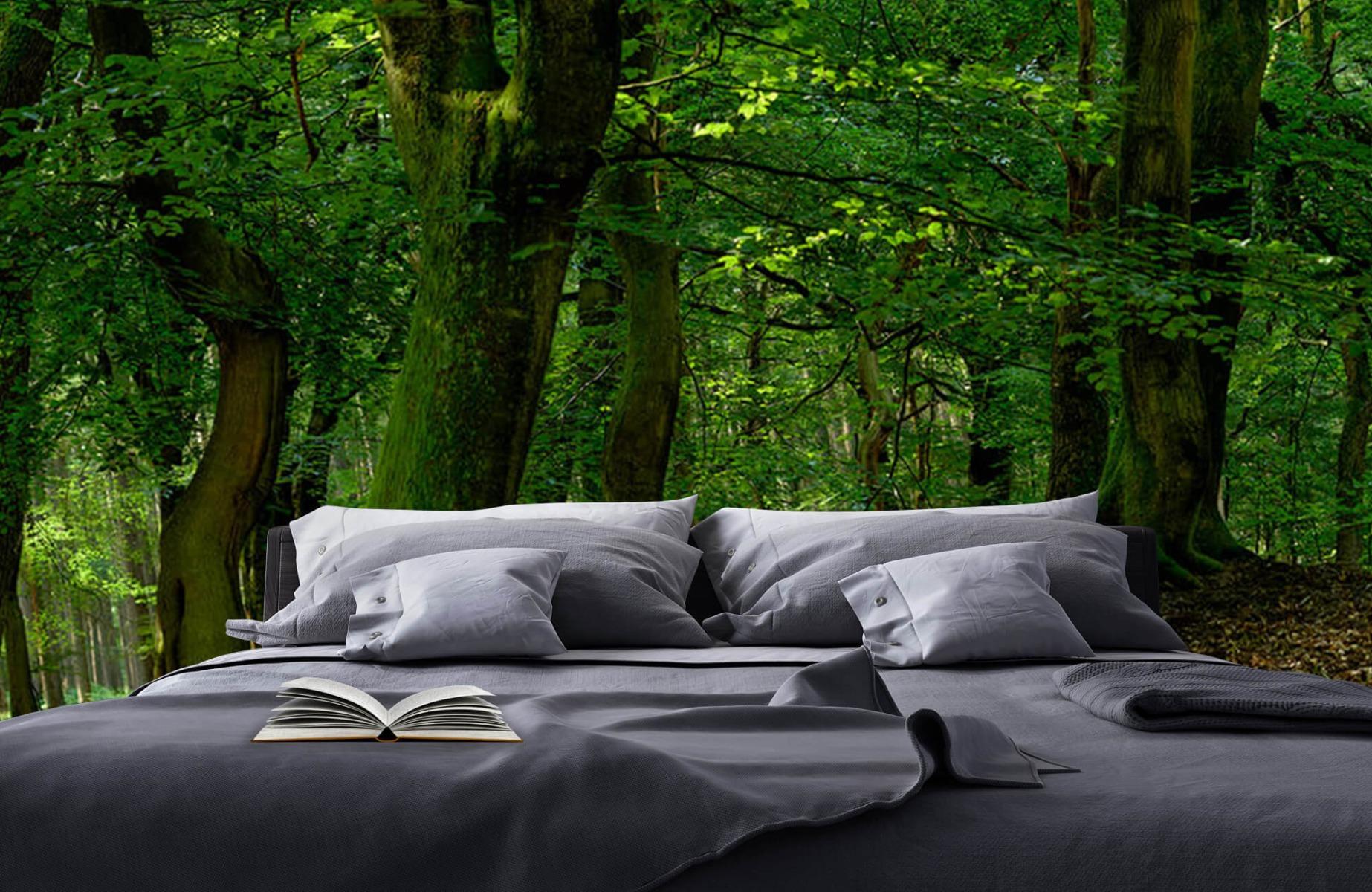 Bos behang - Bomen met groene bladeren - Wallexclusive - Slaapkamer 19