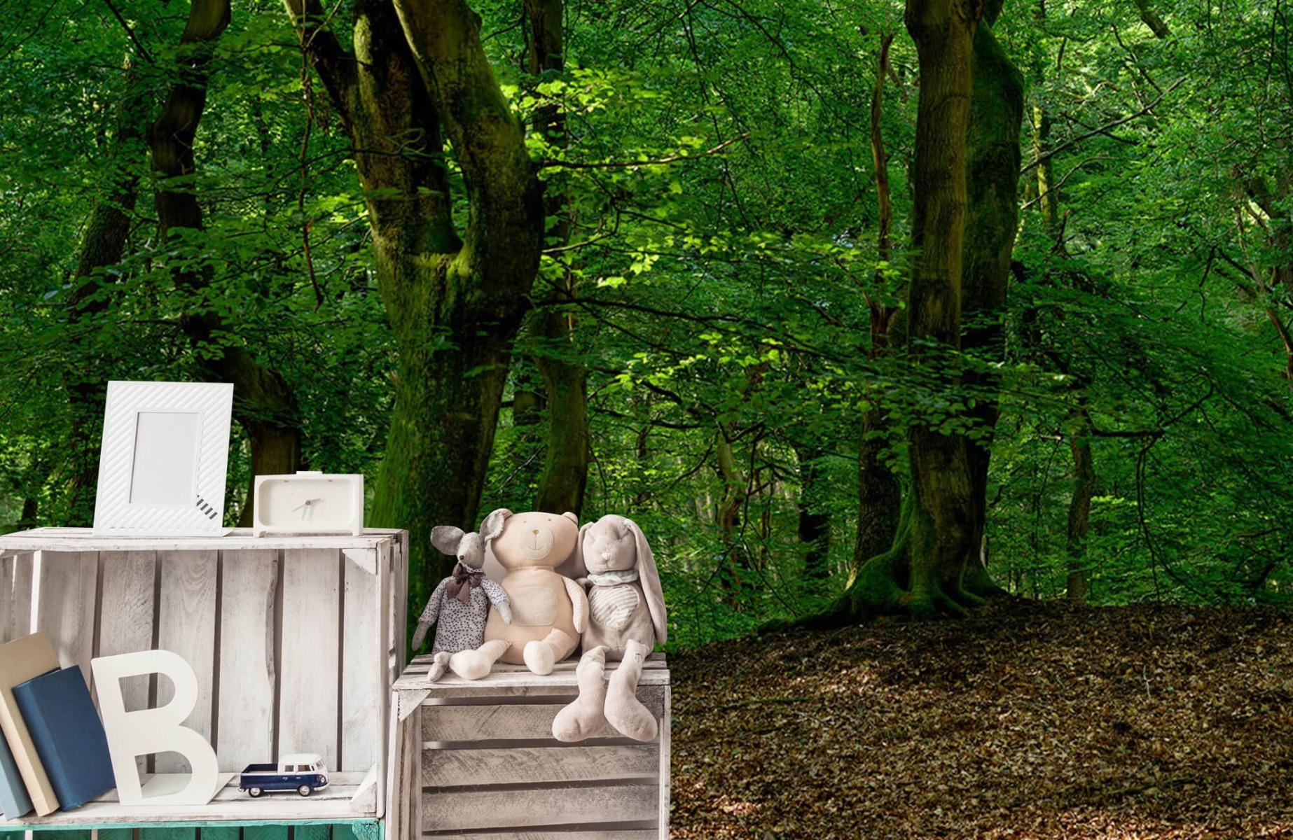 Bos behang - Bomen met groene bladeren - Wallexclusive - Slaapkamer 21