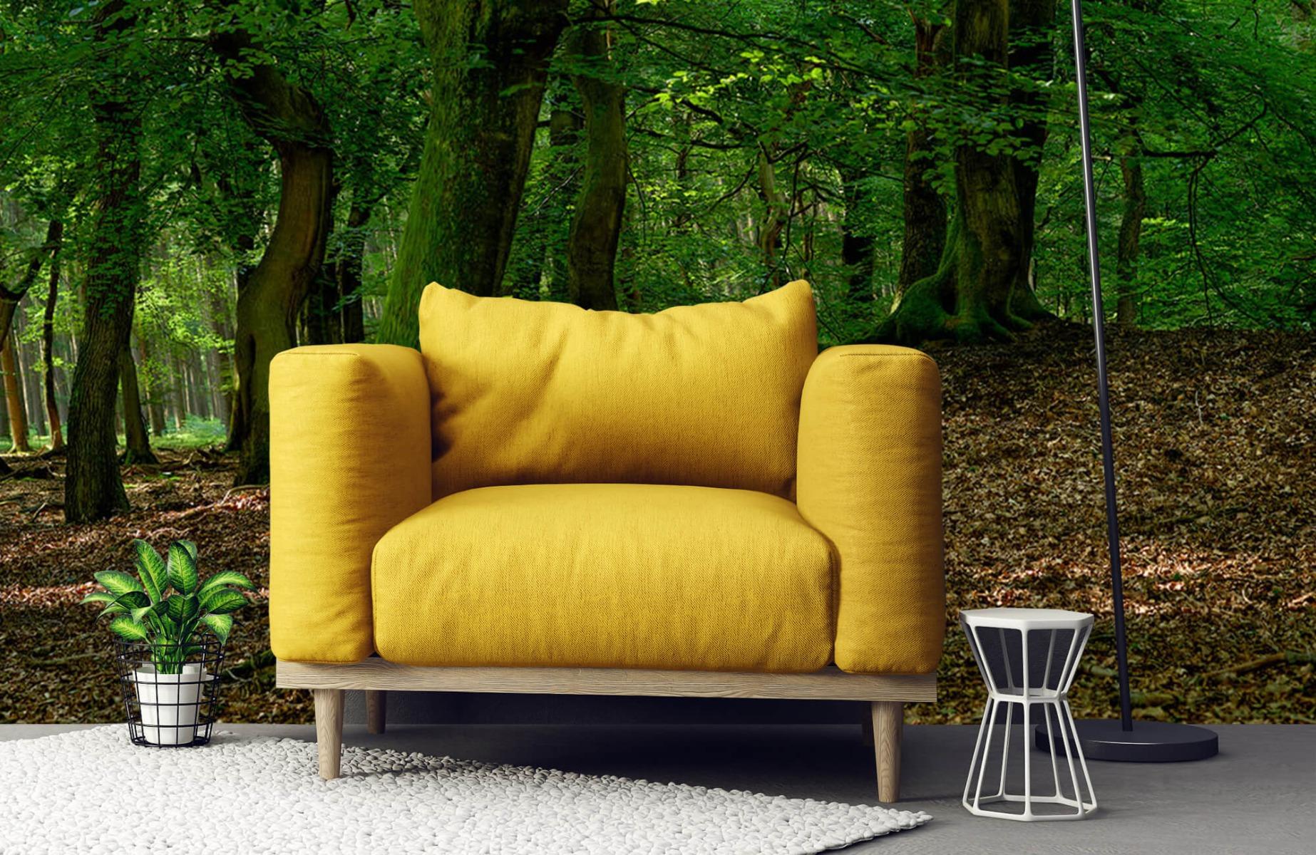Bos behang - Bomen met groene bladeren - Wallexclusive - Slaapkamer 4