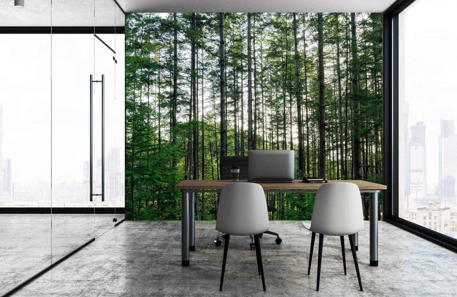 Bos behang - Gedetailleerd bos - Wallexclusive - Slaapkamer 3