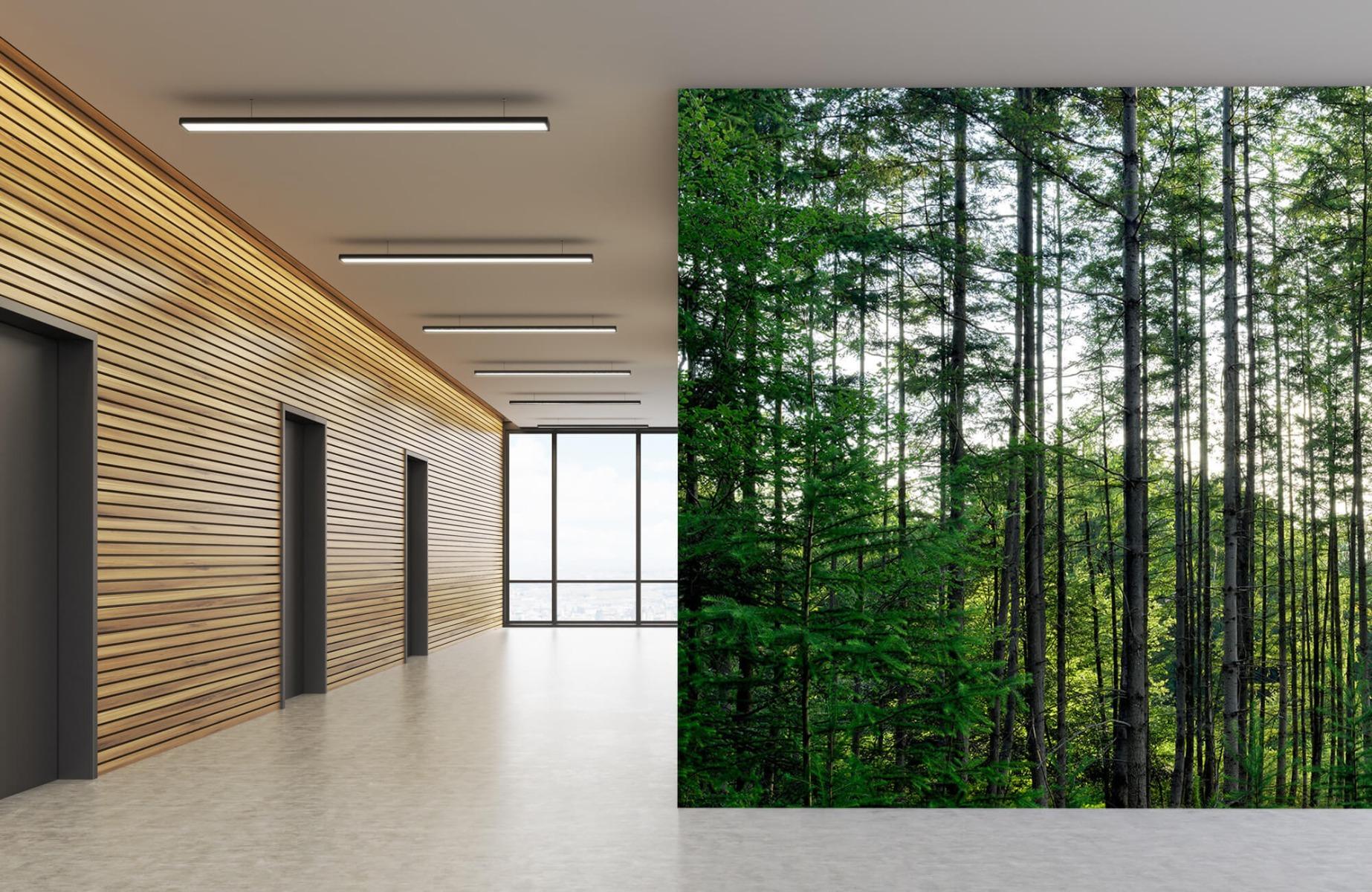 Bos behang - Gedetailleerd bos - Wallexclusive - Slaapkamer 5