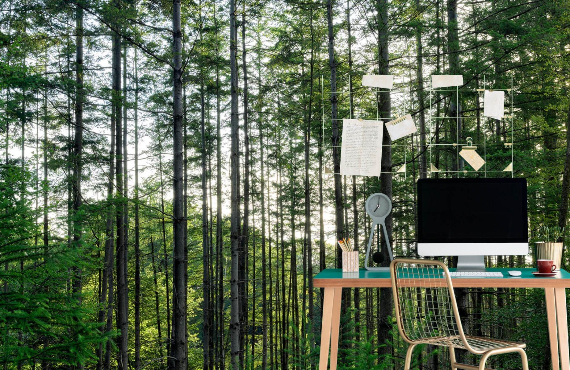 Bos behang - Gedetailleerd bos - Wallexclusive - Slaapkamer 7