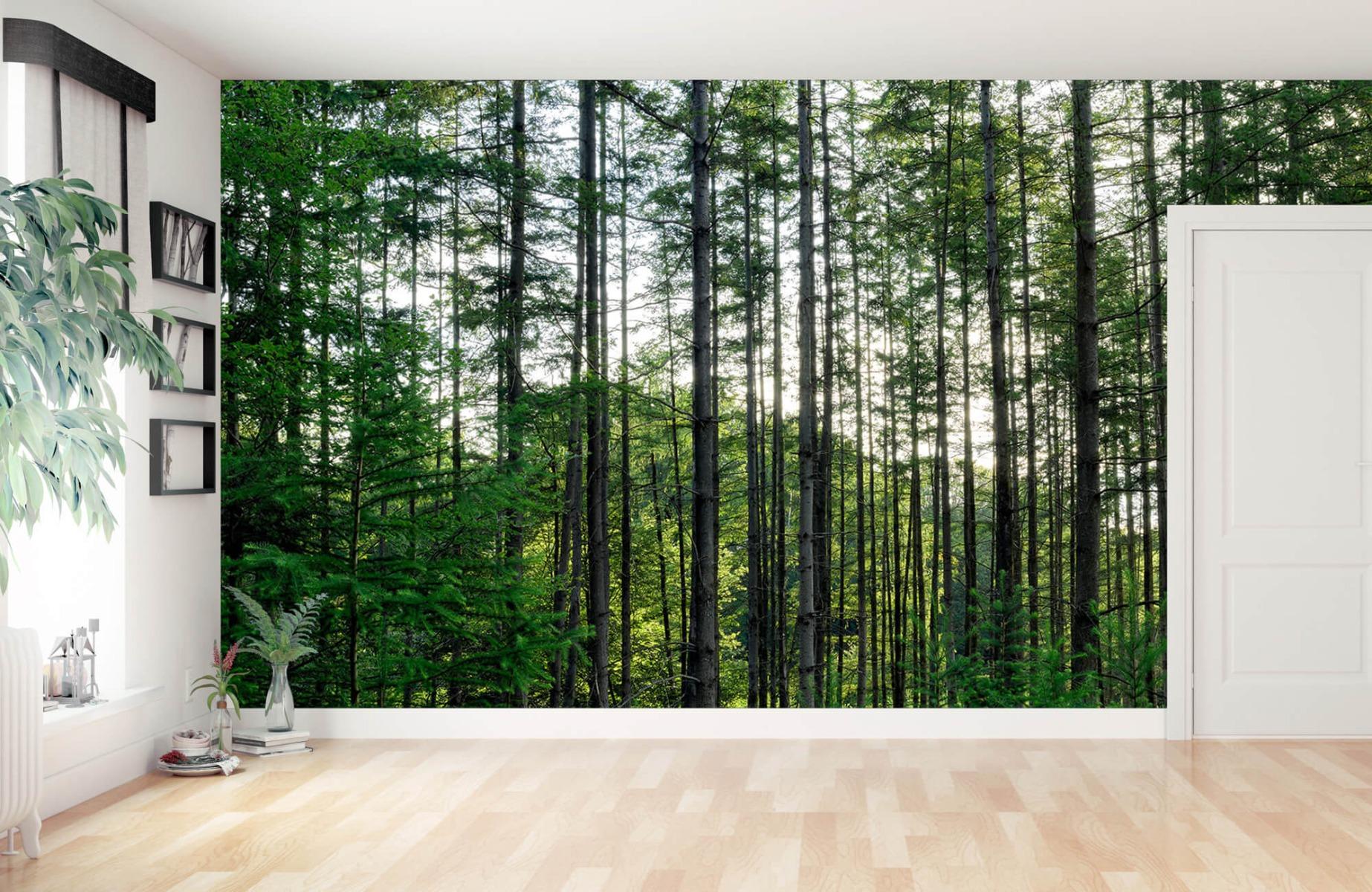 Bos behang - Gedetailleerd bos - Wallexclusive - Slaapkamer 11