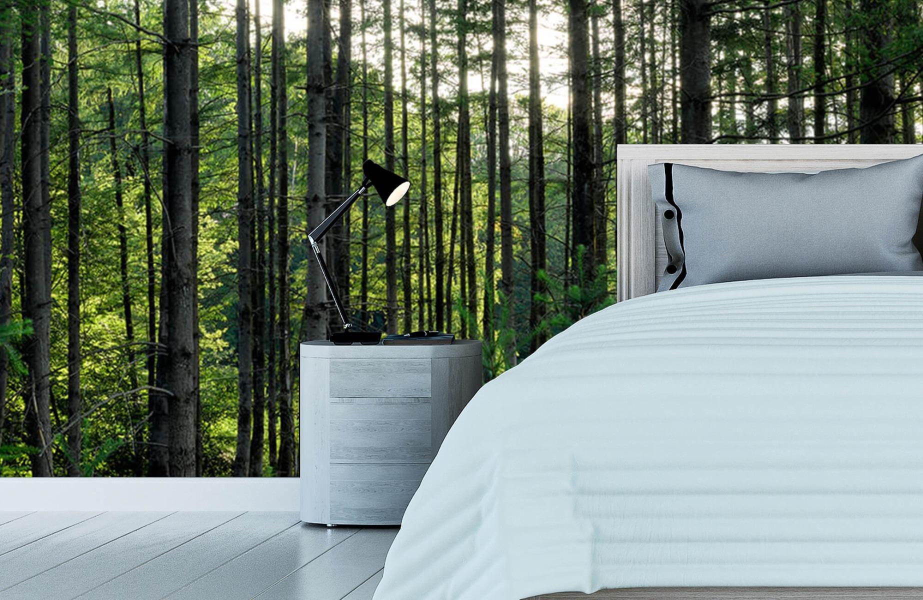 Bos behang - Gedetailleerd bos - Wallexclusive - Slaapkamer 12