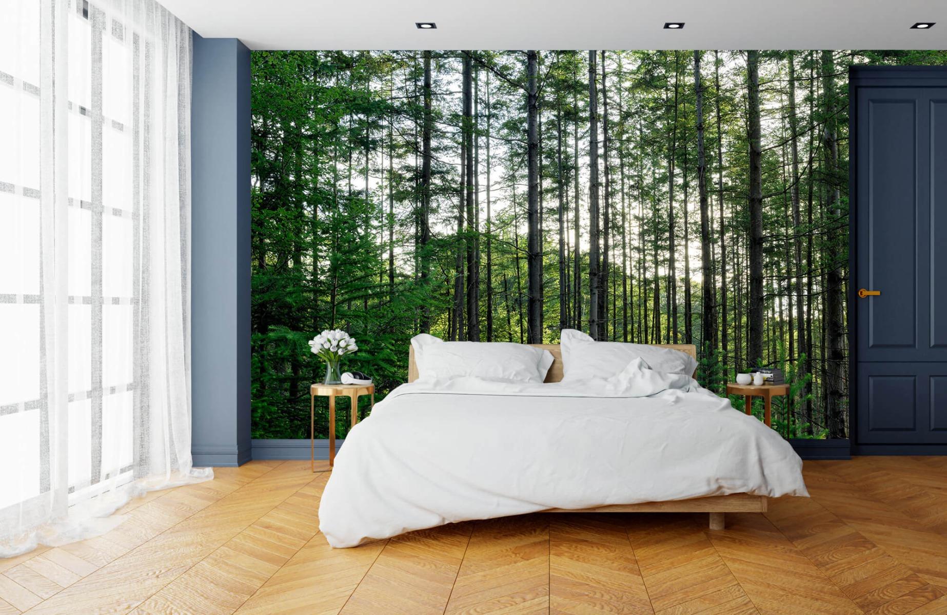 Bos behang - Gedetailleerd bos - Wallexclusive - Slaapkamer 15