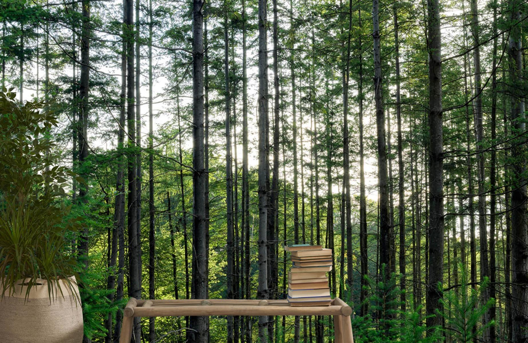 Bos behang - Gedetailleerd bos - Wallexclusive - Slaapkamer 20