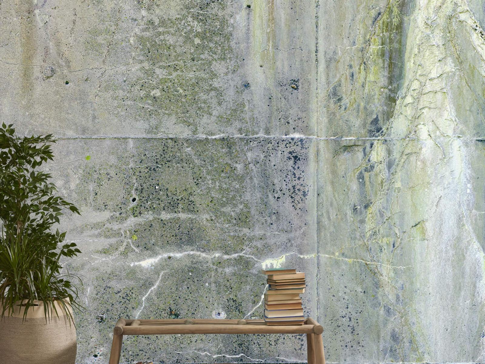 Betonlook behang - Verweerd beton - Wallexclusive - Tienerkamer 20