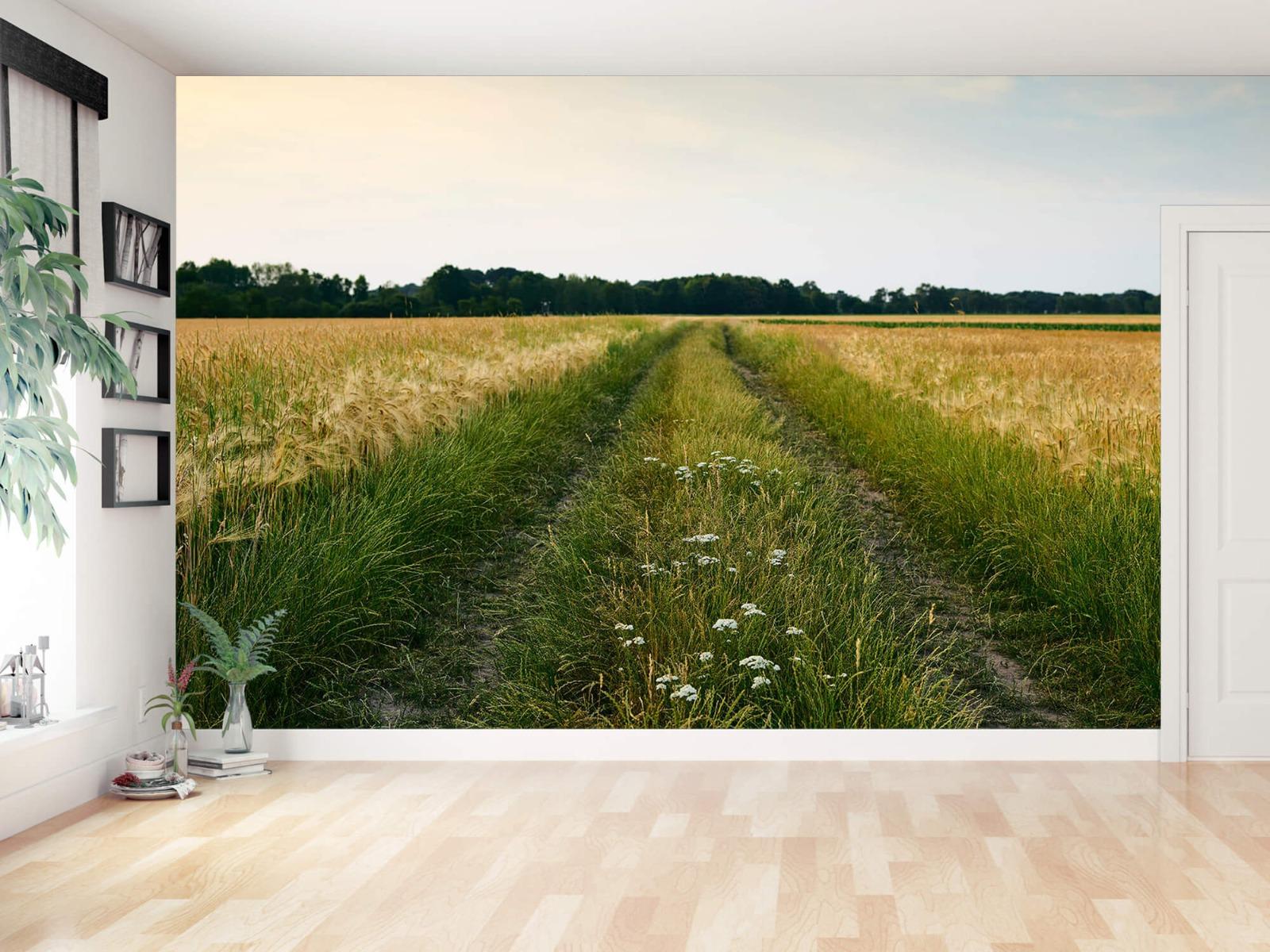 Landschap - Spoor in korenveld - Wallexclusive - Slaapkamer 13