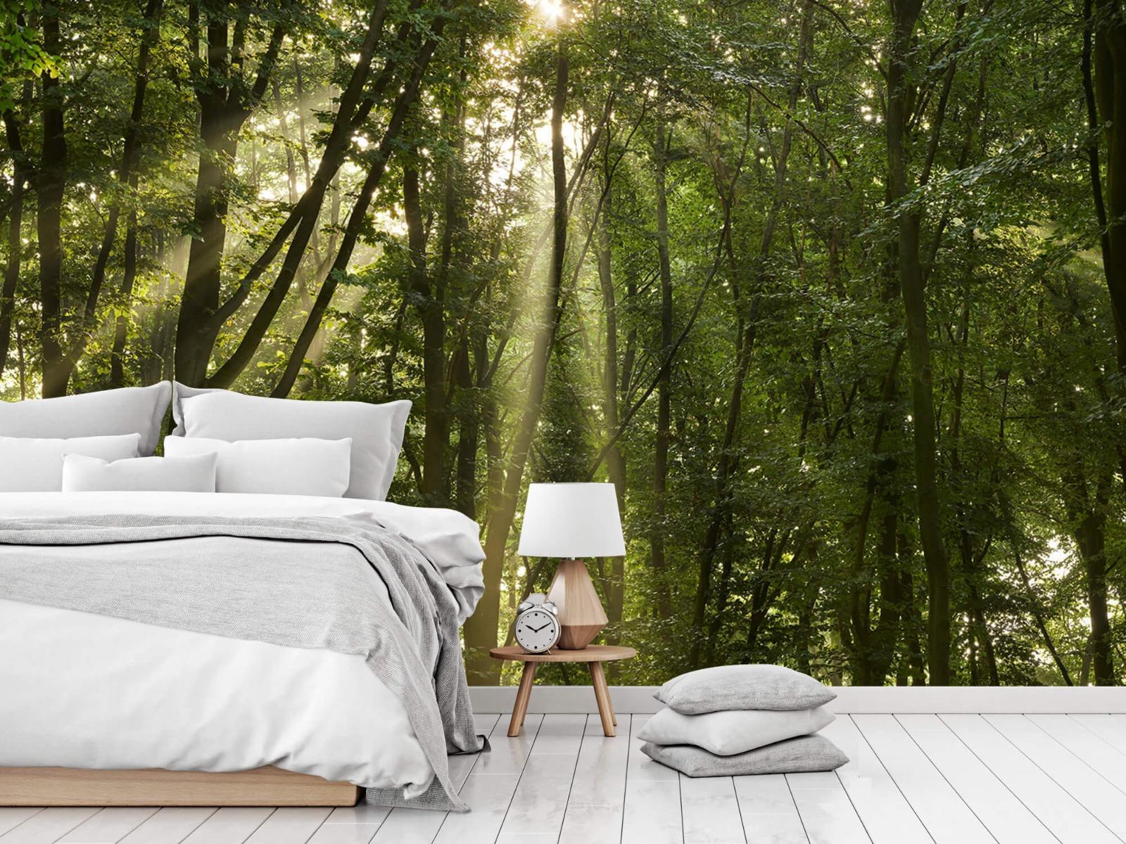 Bomen - Zonnestralen in het bos - Slaapkamer 14